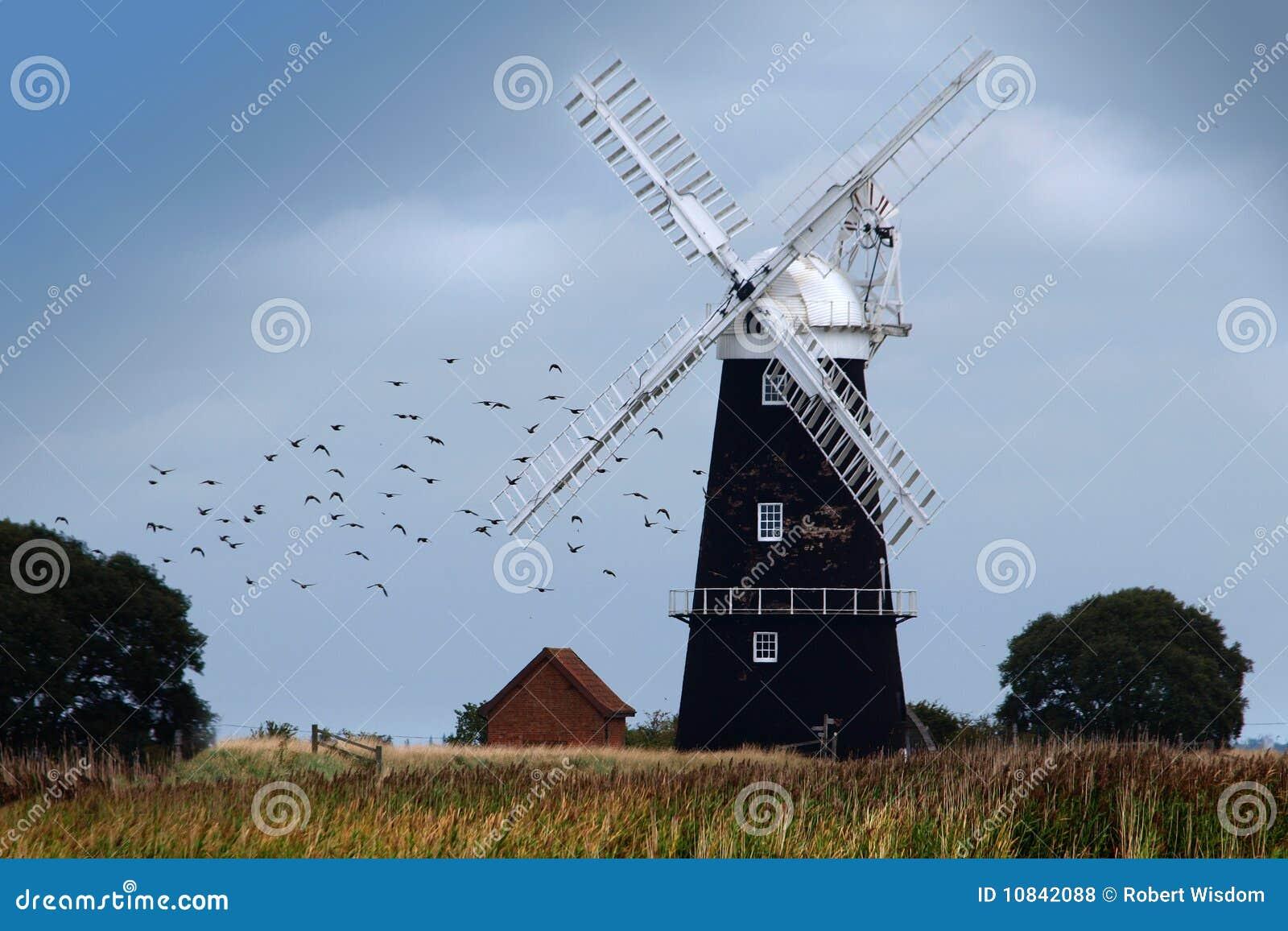 Broads Norfolk wiatraczek