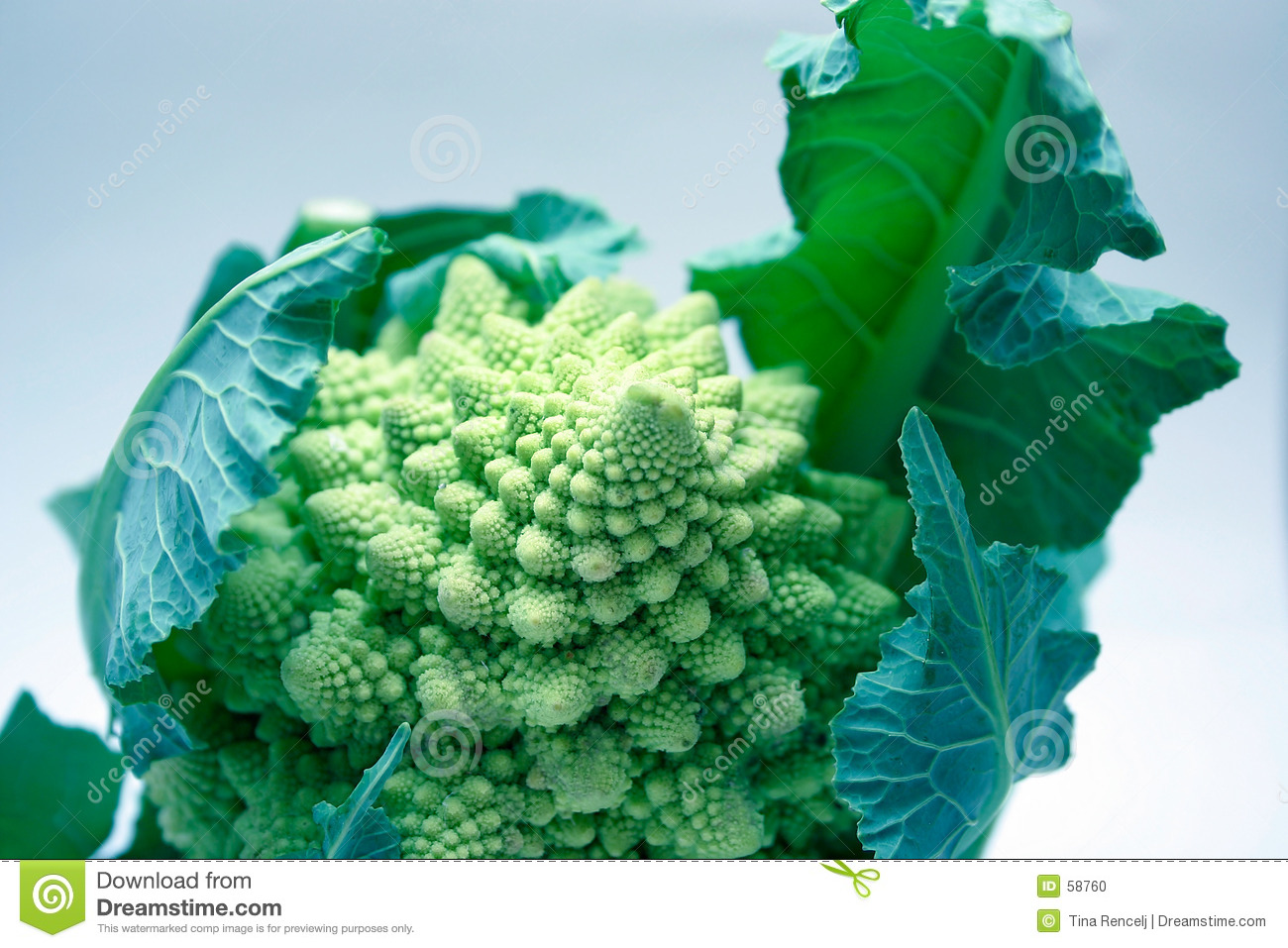 Download Broccoflower photo stock. Image du agriculture, curd, mangez - 58760