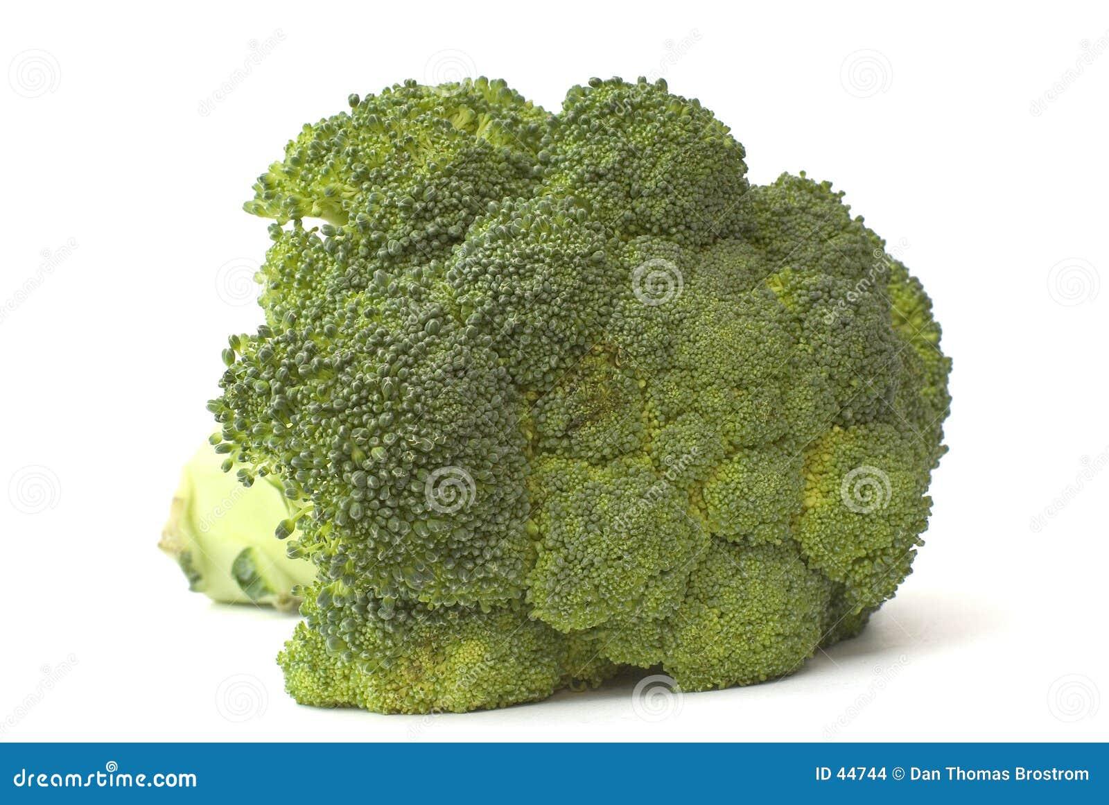 Download Broccoli stock foto. Afbeelding bestaande uit landbouw, geïsoleerd - 44744