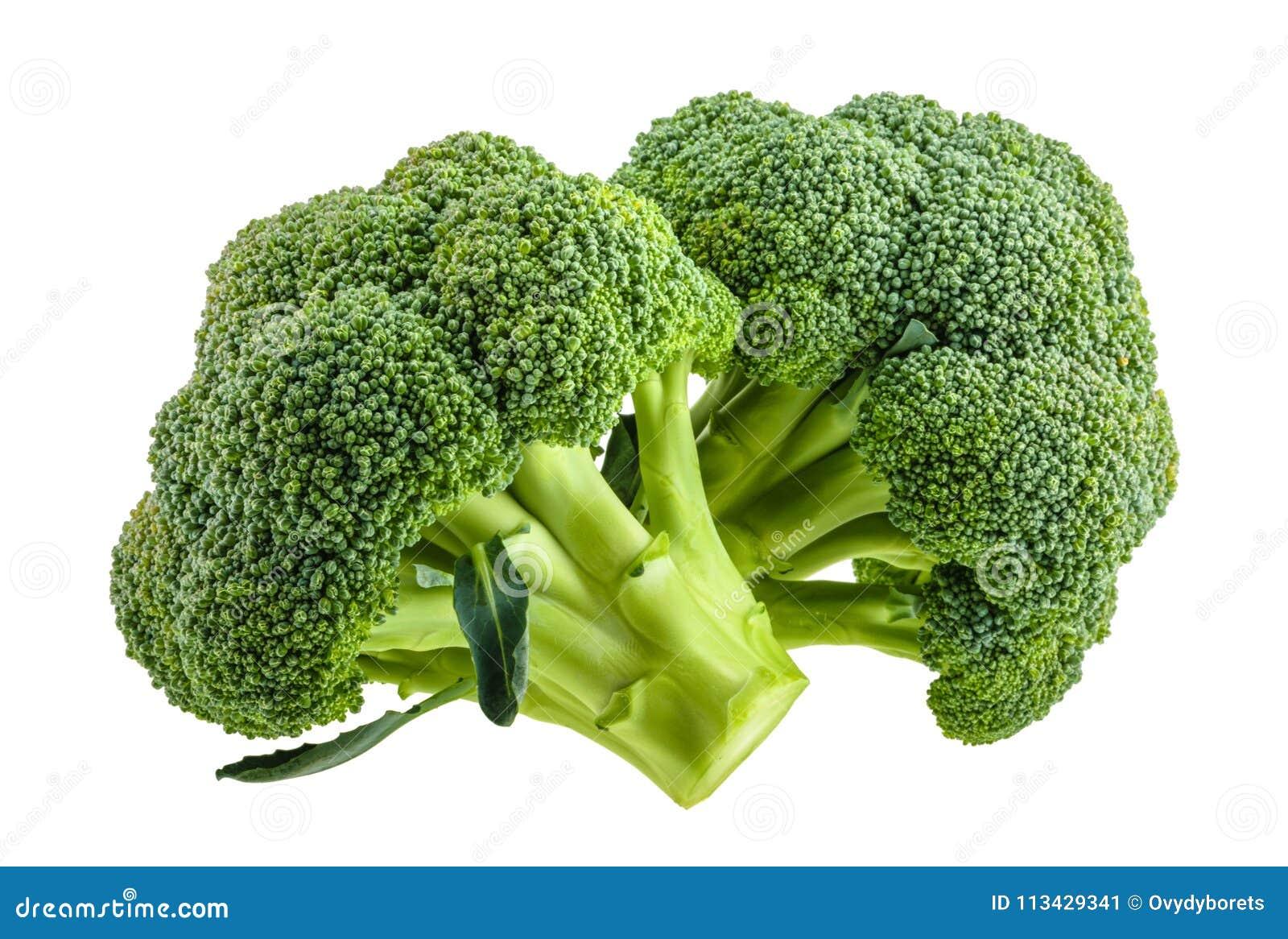 Broccoli som isoleras på vit utan skugga