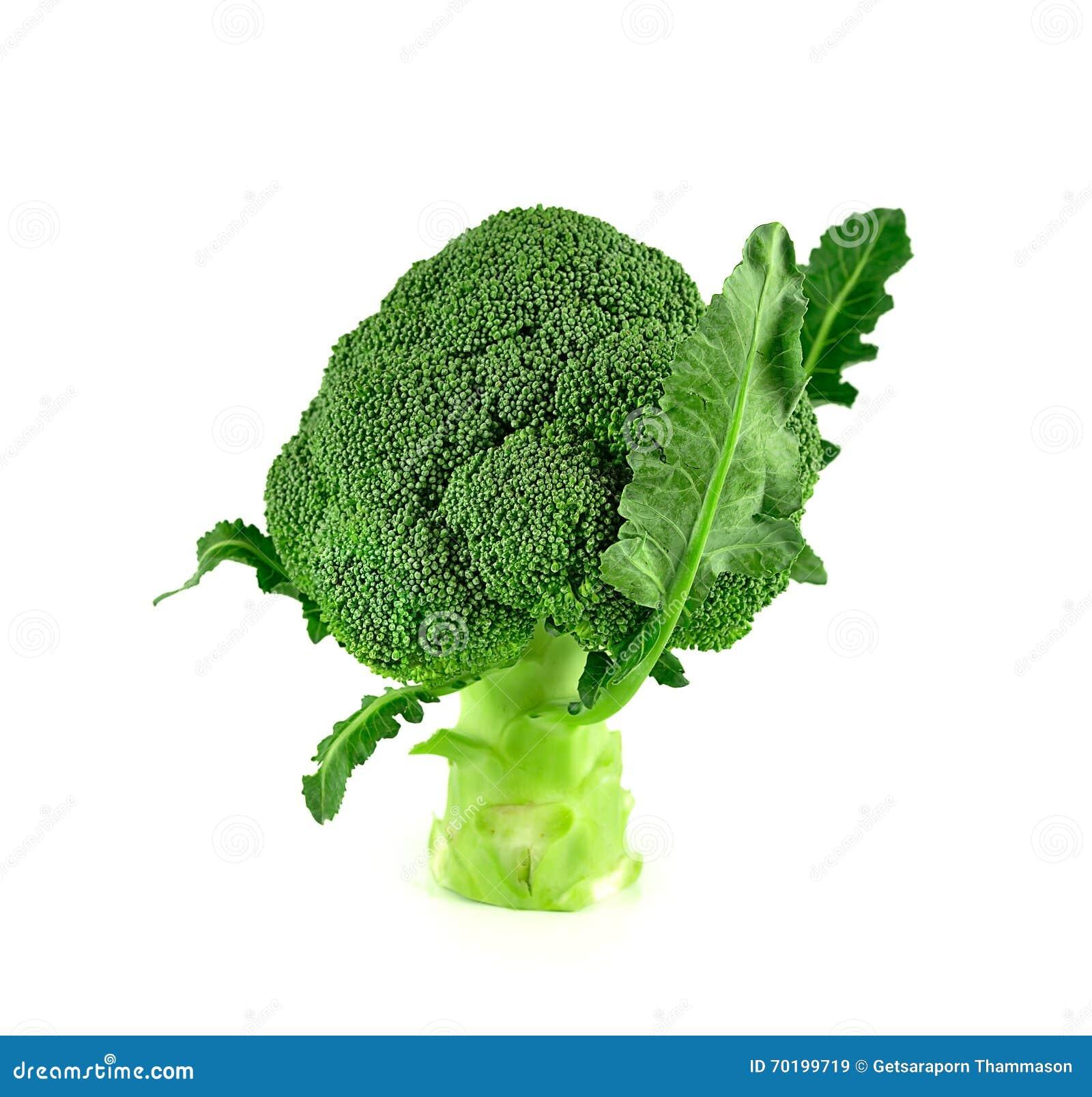 Broccoli stänger sig upp isolerat på vit bakgrund