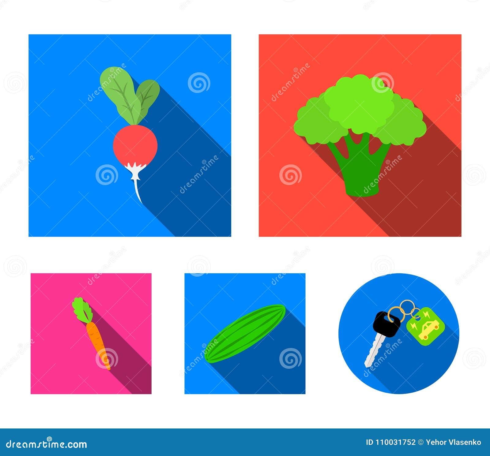 Broccolikool, radijs, groene komkommer, wortelen met bovenkanten Groenten geplaatst inzamelingspictogrammen in vlak stijl vectors