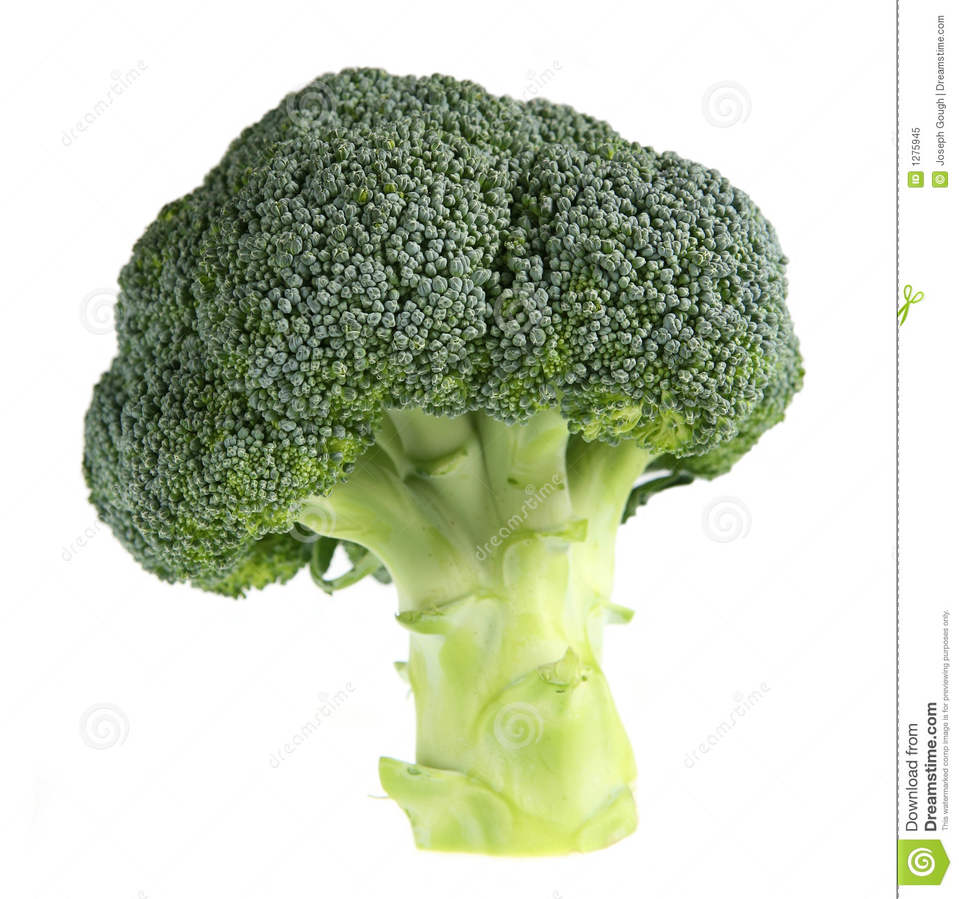 Broccolitree
