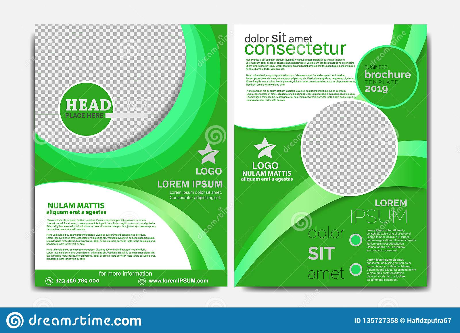 Business Brochure Template Green Color R Stock Vector Illustration
