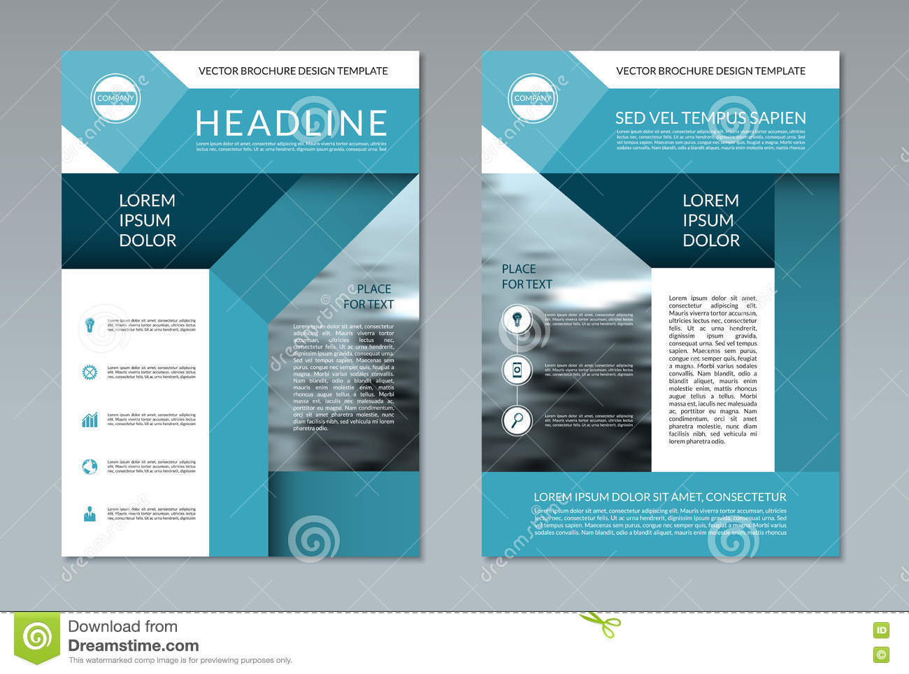 Brochure Flyer Layout Template. A4 Size. Front And Back