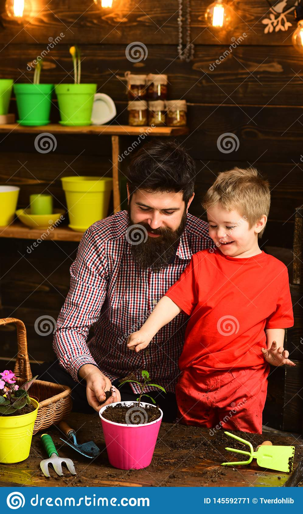 Brodata m??czyzny i ch?opiec mi?o?ci natura szcz??liwe ogrodniczki z wiosna kwiatami Ojciec i syn Ojca dzie? Kwiat opieka