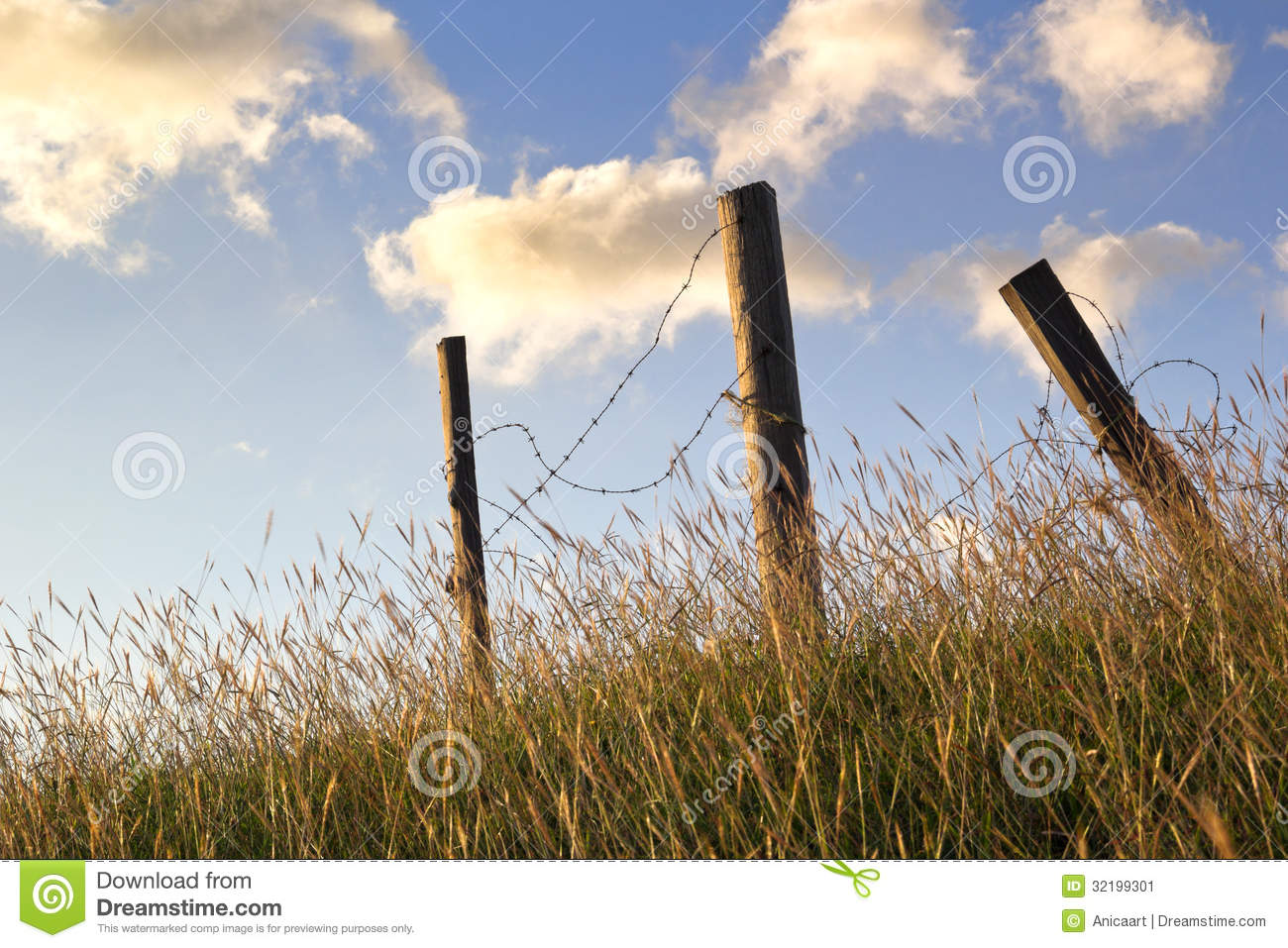 Broken Barbed Wire Fence Stock Image Image Of Paddock