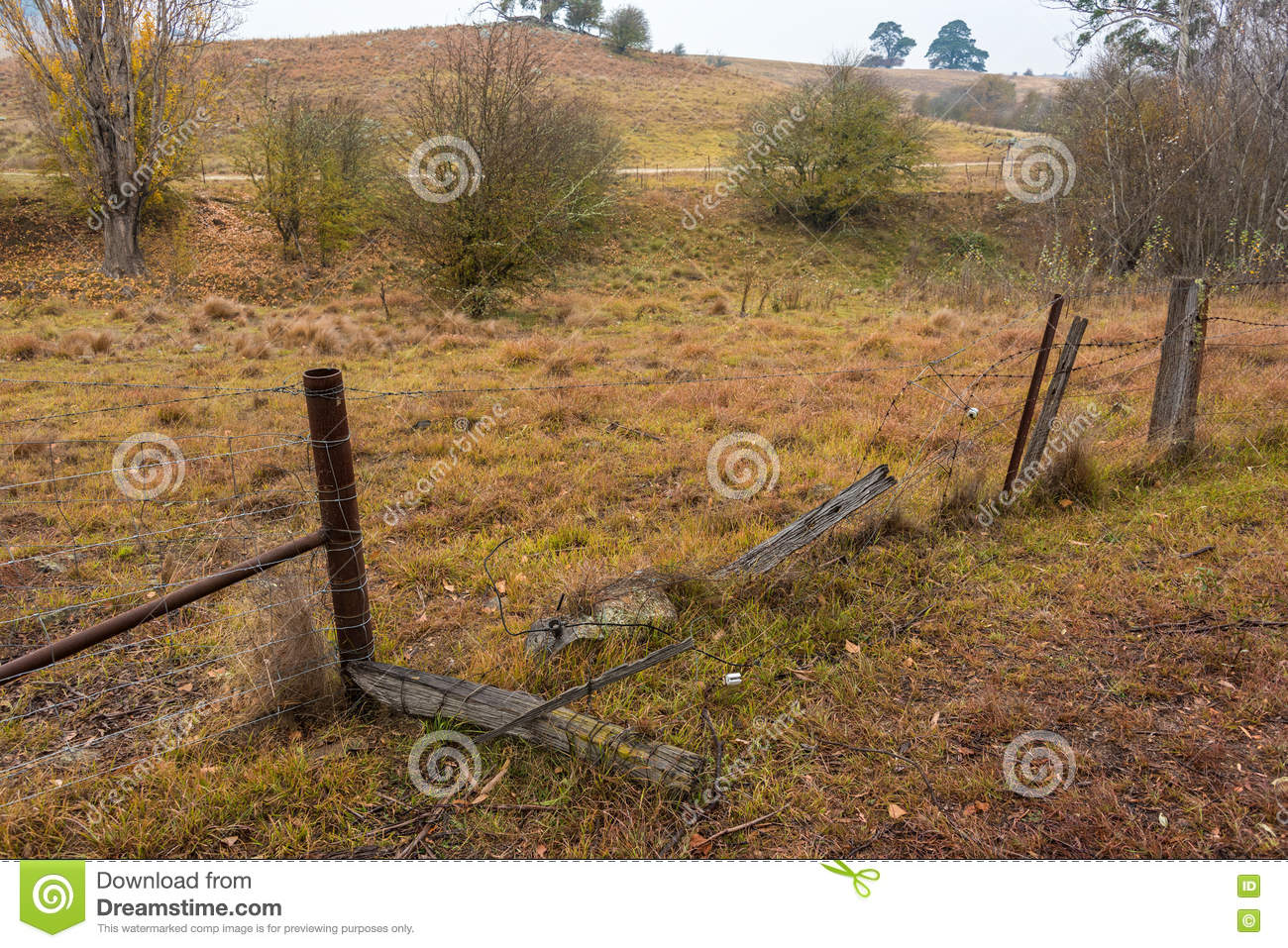 Broken Damaged Barbed Wire Fence Stock Image Image Of