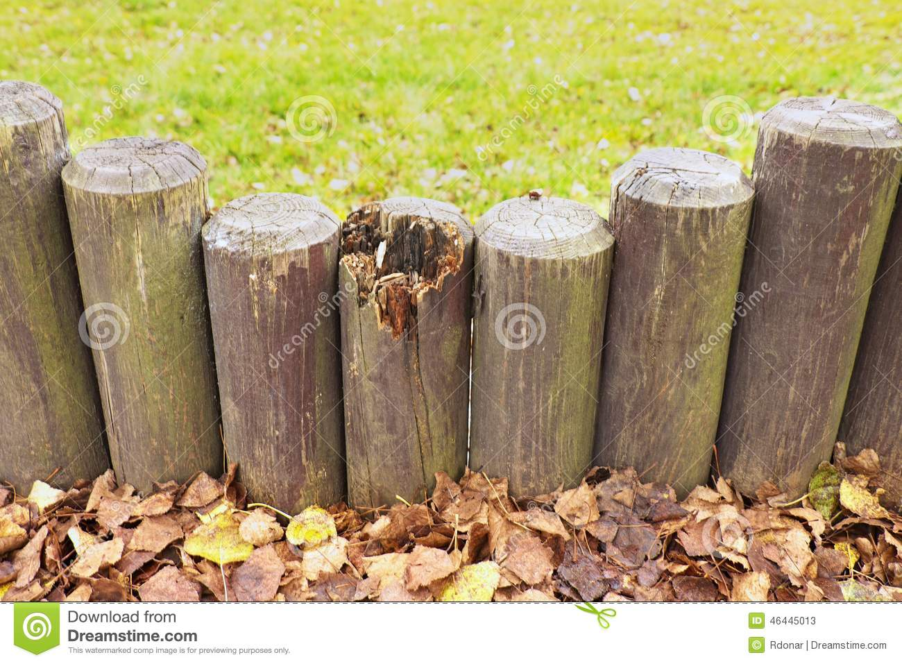 Broken fence, old wooden stockade, palisade, grass in background. Autumn leaves.