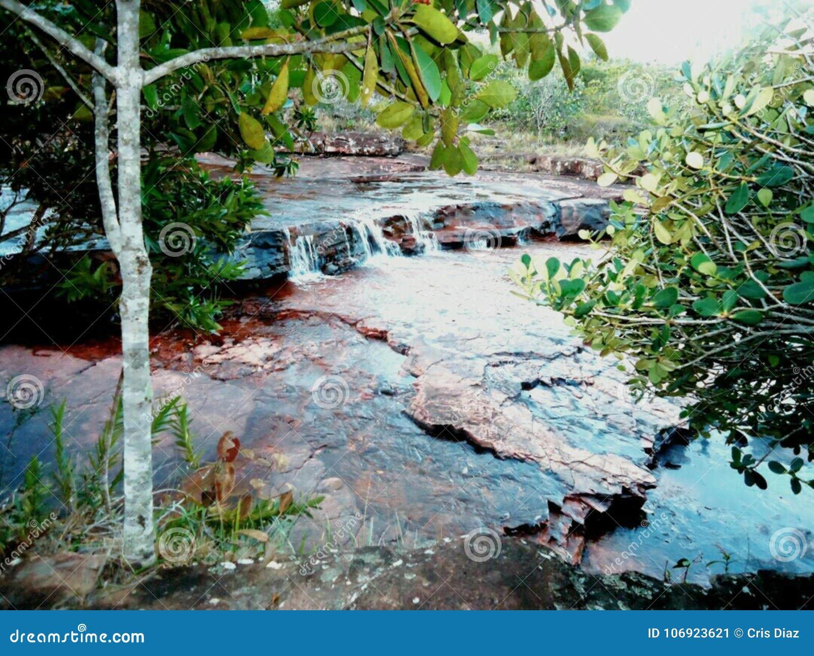 Cascada de Agua Laja Roja Parque Nacional Gran Sabana