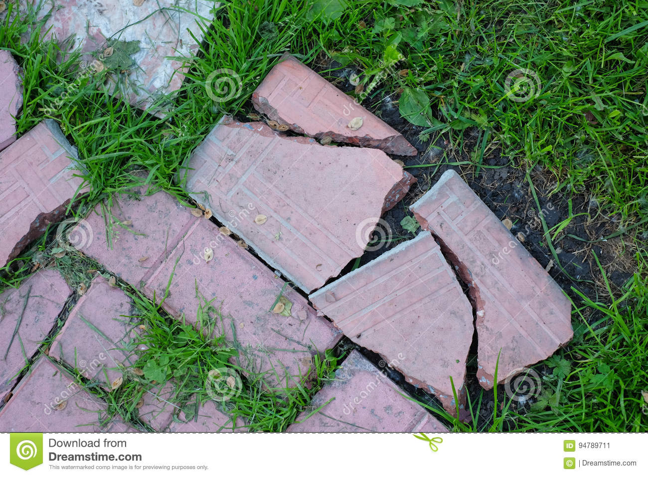Grass background tile Cartoony Broken Road Of Pink Tile Overgrown With Green Grass Background Texturescom Broken Road Of Pink Tile Overgrown With Green Grass Background Top