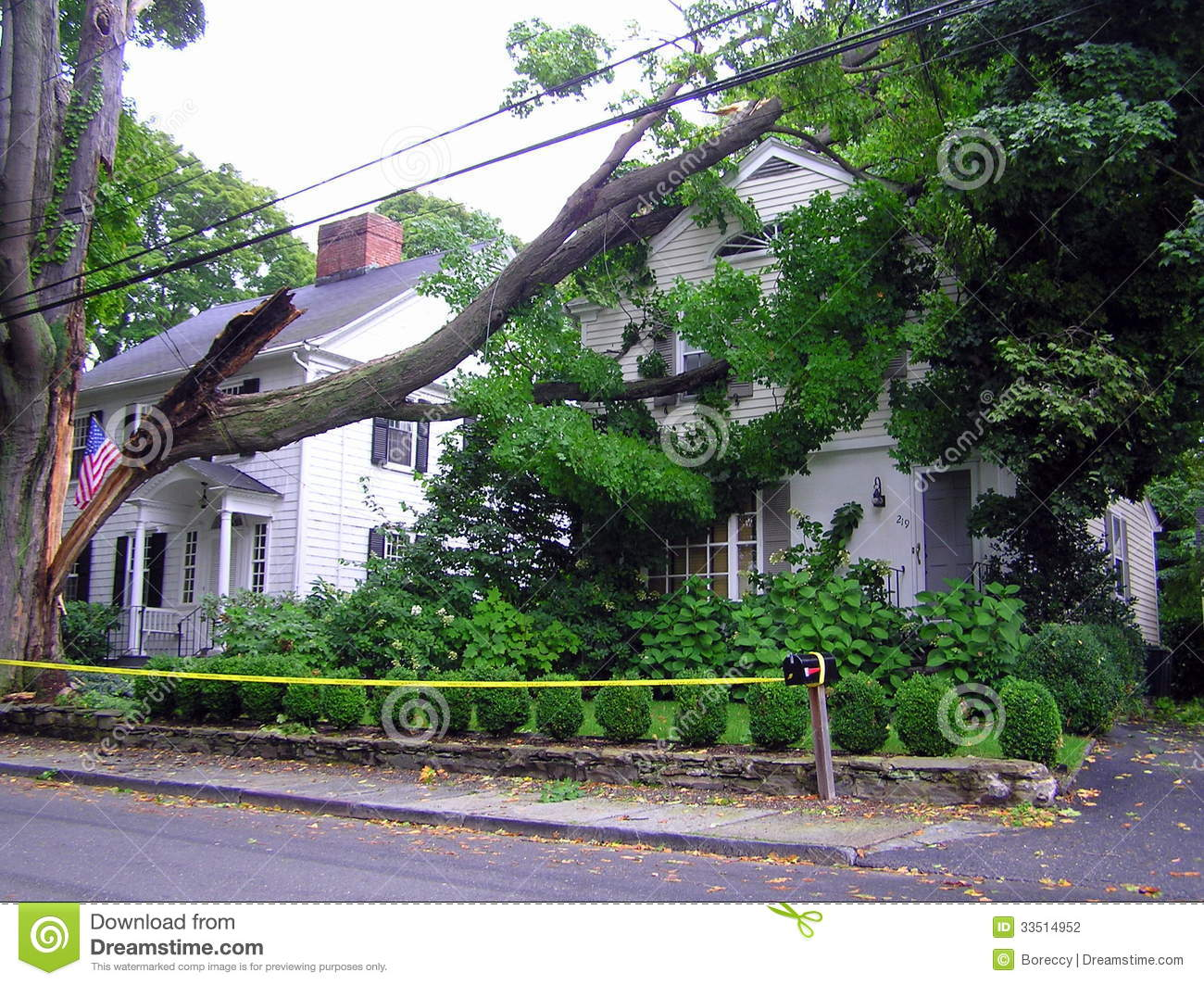 Broken Tree On House Hurricane Damage Stock Photography