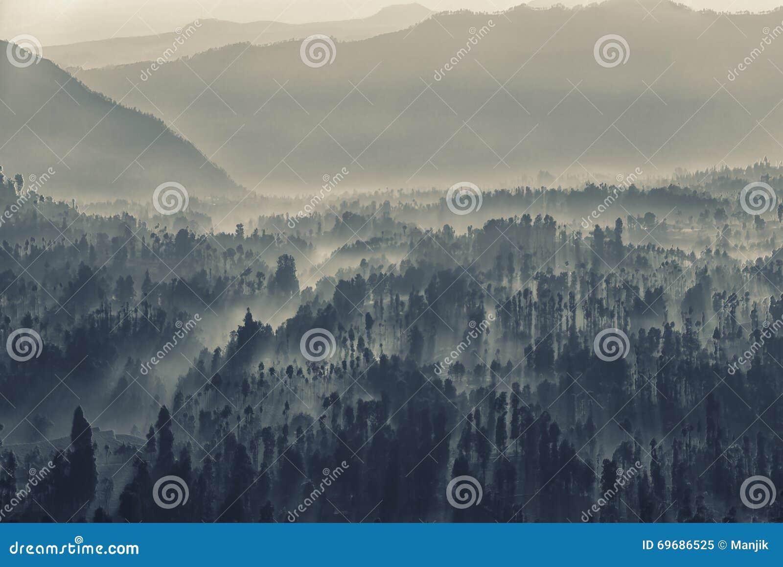 Bromo caldera in i dimman