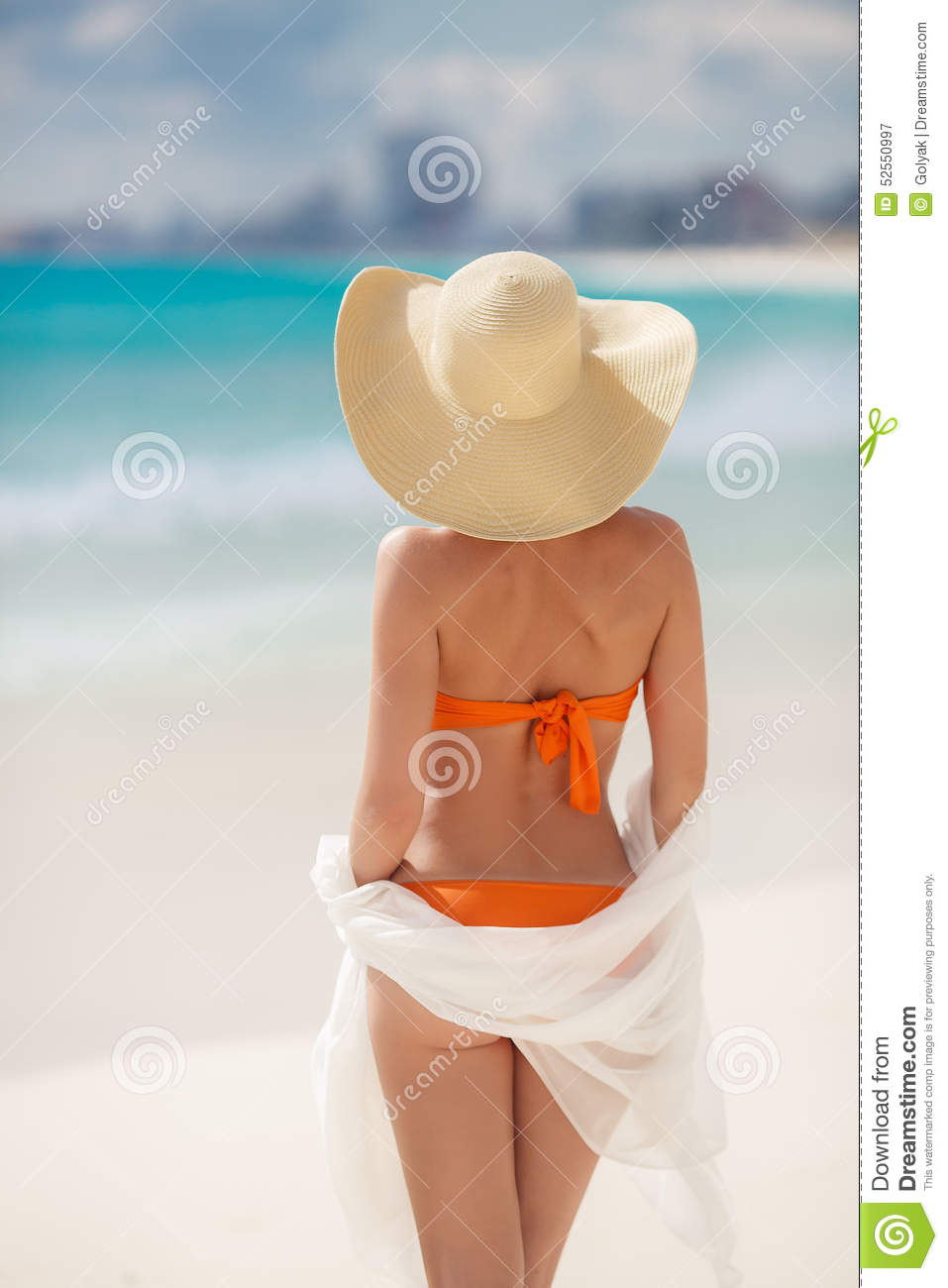 BronsTan Woman Sunbathing At Tropical strand
