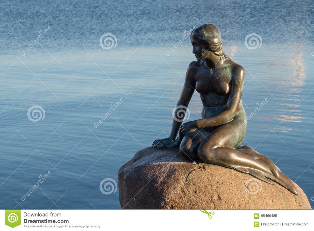 mermaid stock photos images u0026 pictures 11 347 images
