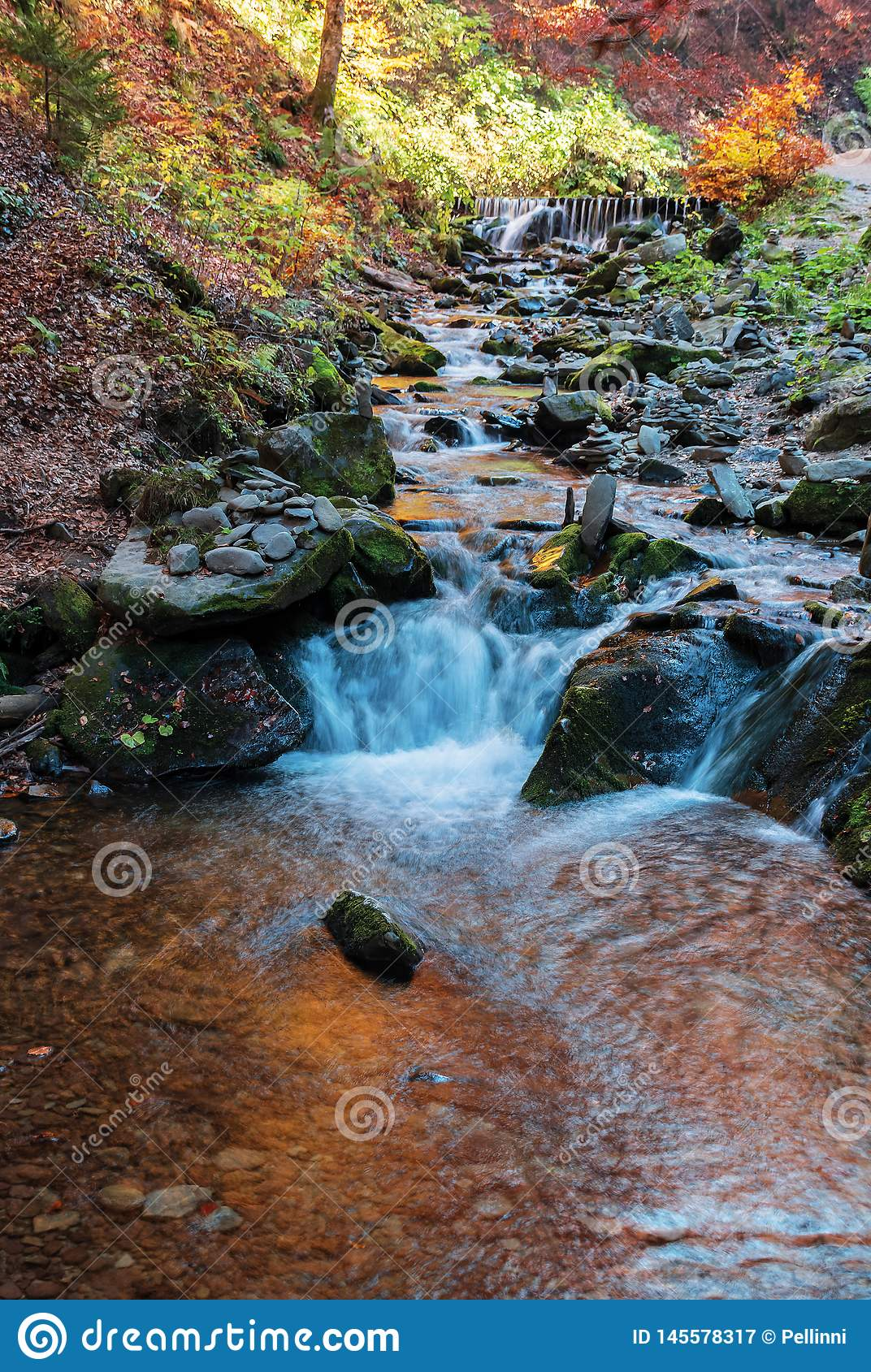 Brook with cascade in beech forest