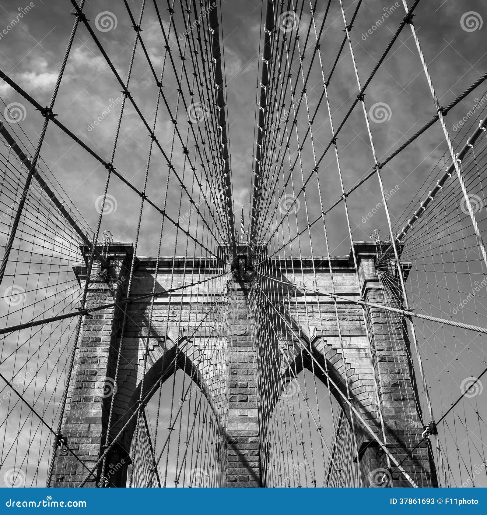 Brooklyn bro, New York City