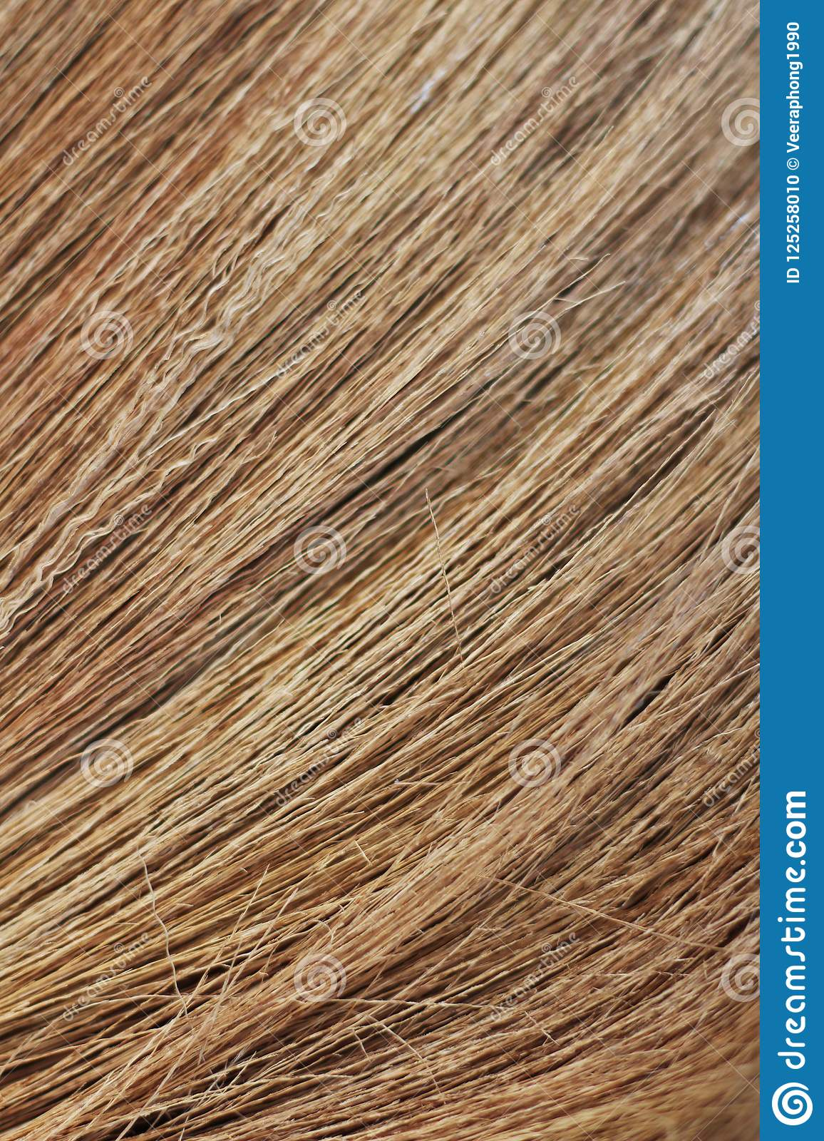 broom texture broom background wilting background stock photo