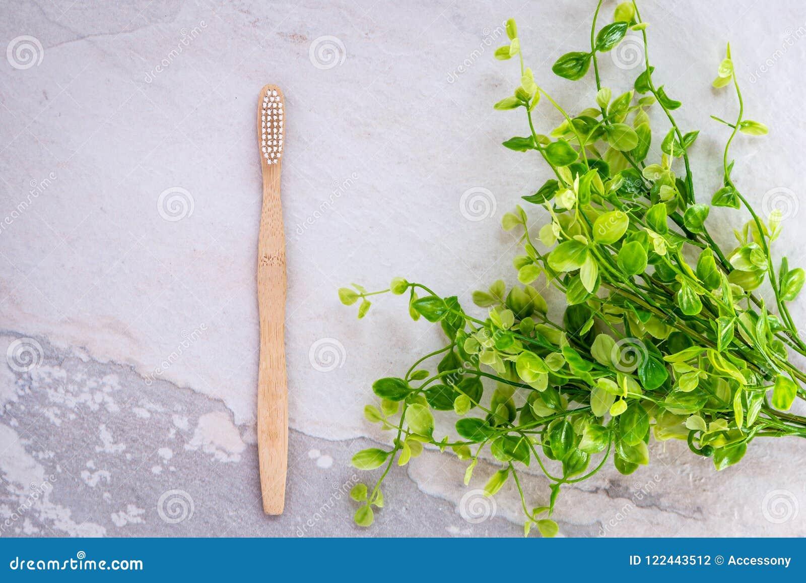 Brosse à Dents En Bambou Biodégradable Sur Une Partie Supérieure Du
