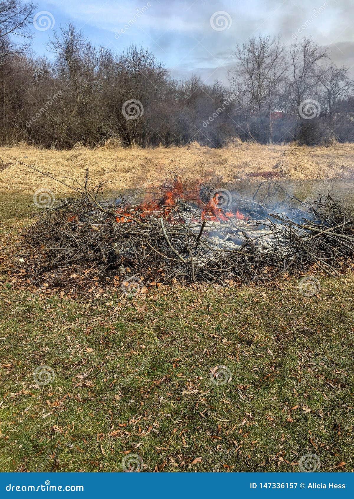 Brosse brûlante avec les flammes et la fumée
