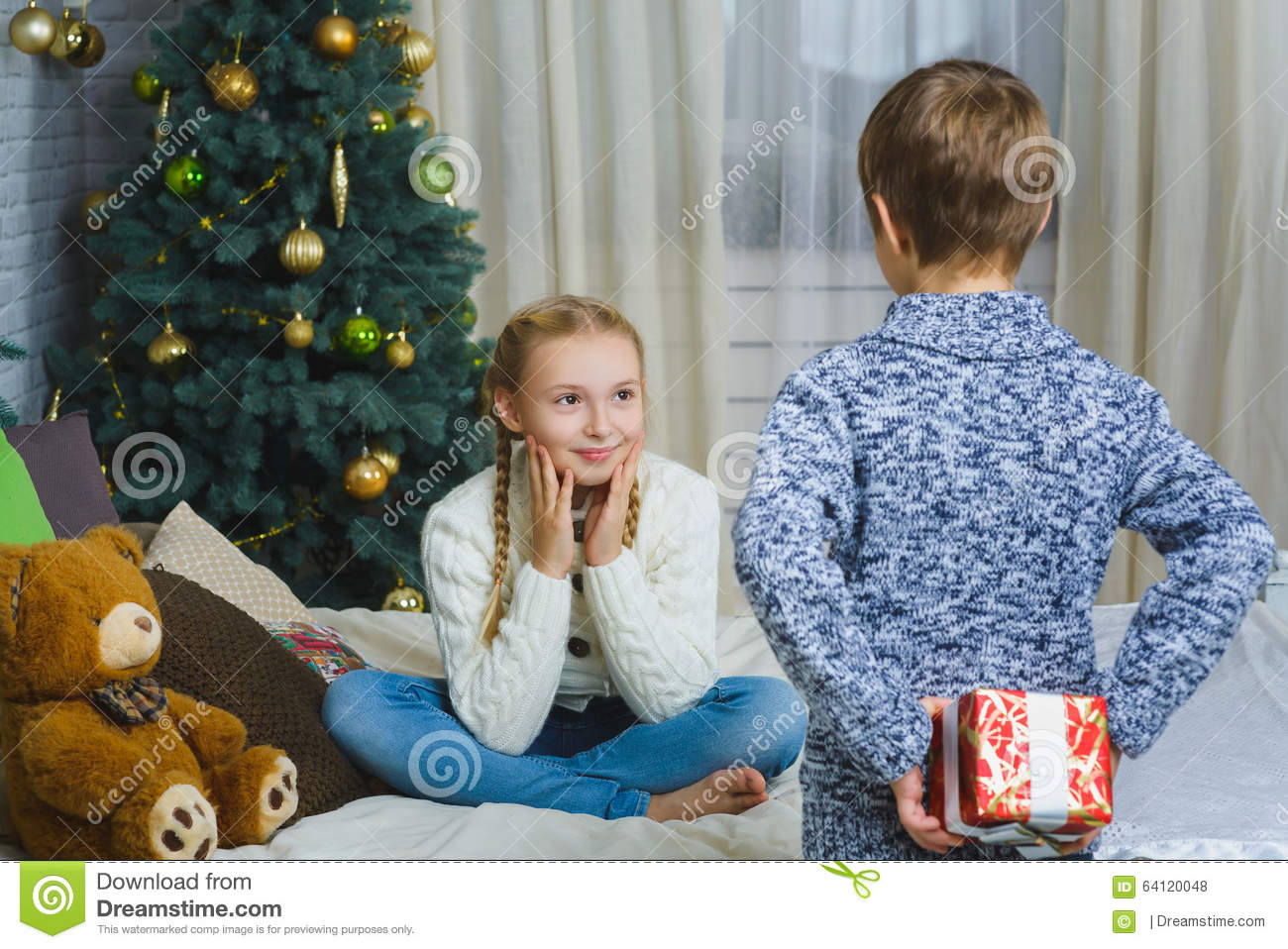 Brother Is Going To Give His Sister A Gift For Stock Photo ...