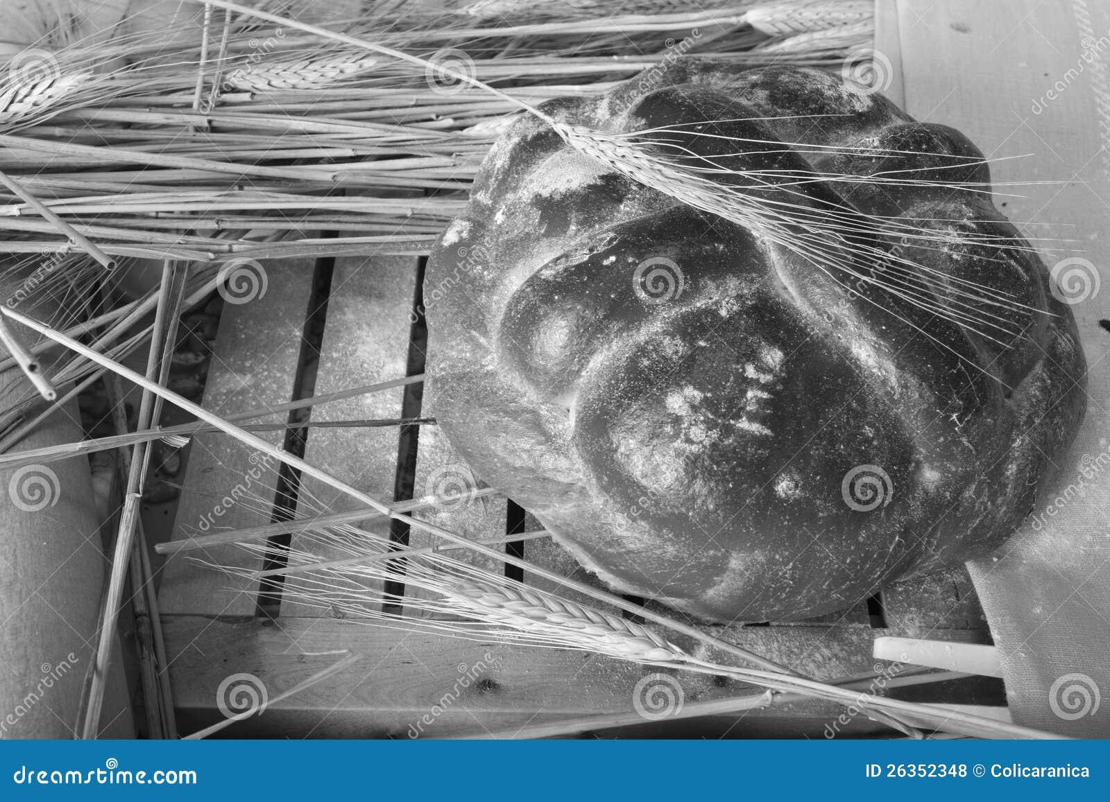 Brotspezialgebiet