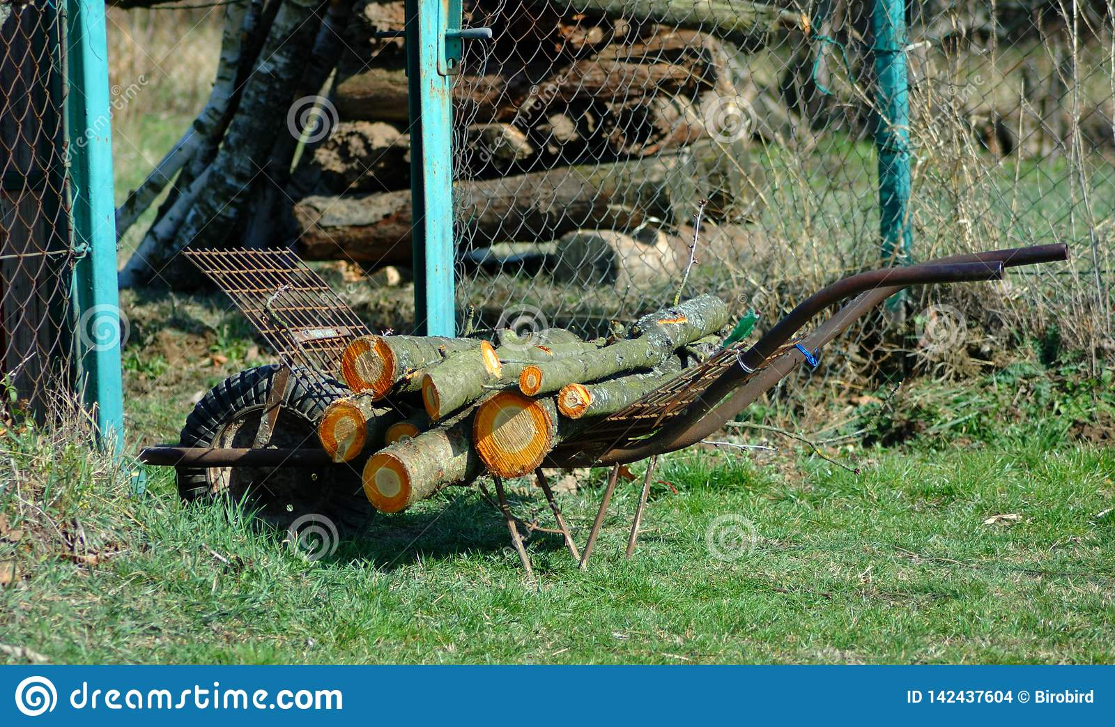 Brouette de roue conçue pour le bois de transport