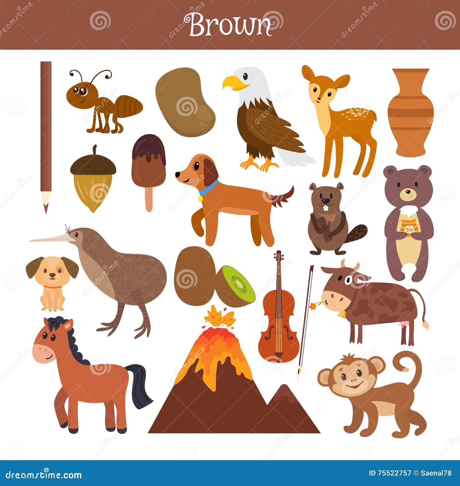 Brougham Выучите цвет Комплект образования Иллюстрация основного c