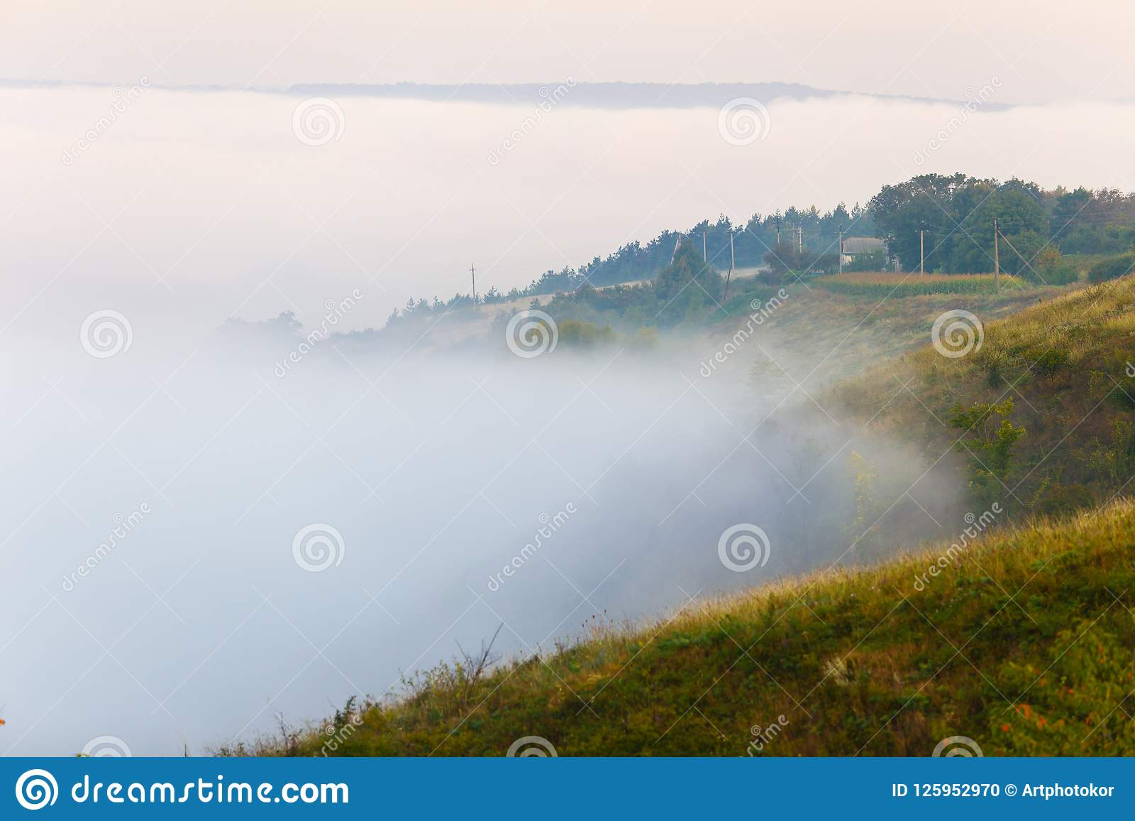 Brouillard épais couvrant les pentes vertes en Ukraine Horizontal de matin