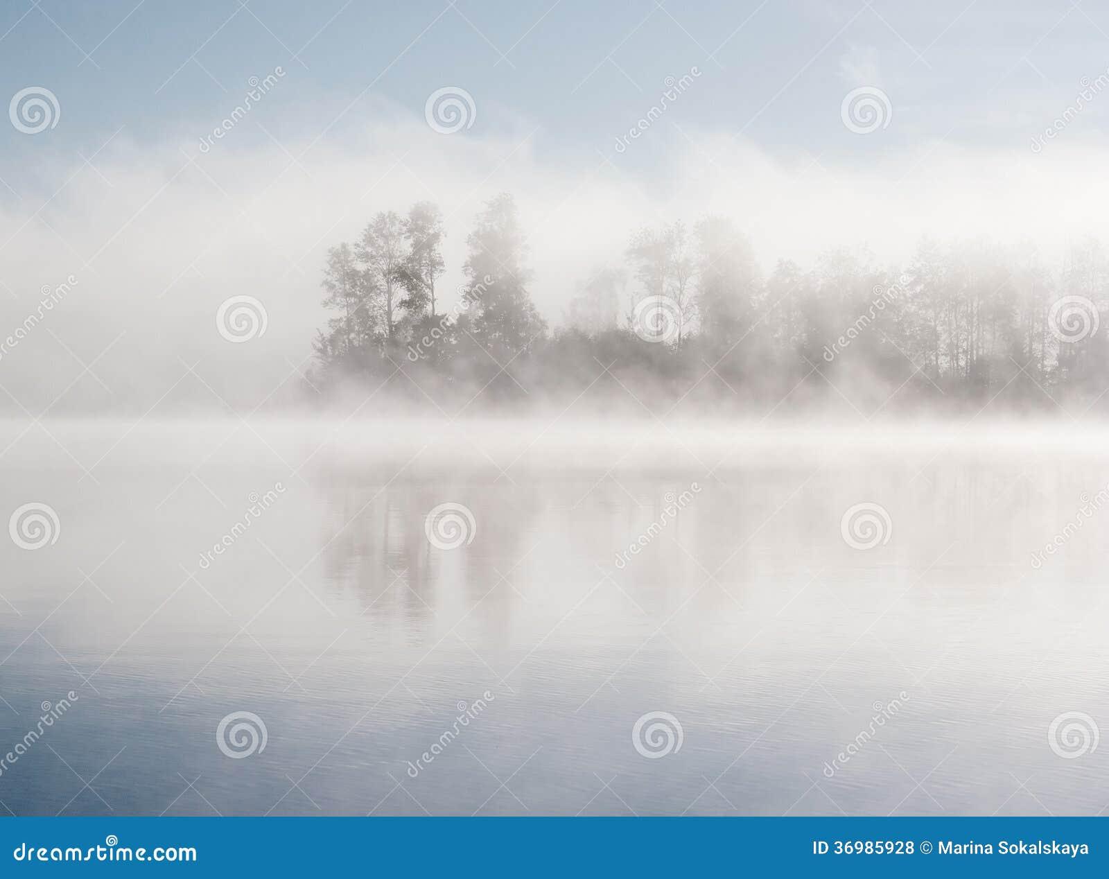 Brouillard de forêt de lac