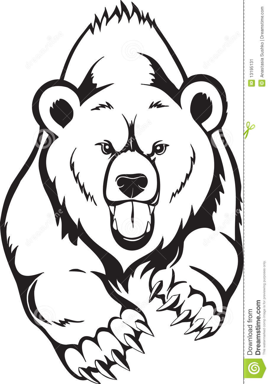Brown Bear Grizzly Stock Image Image 13195131