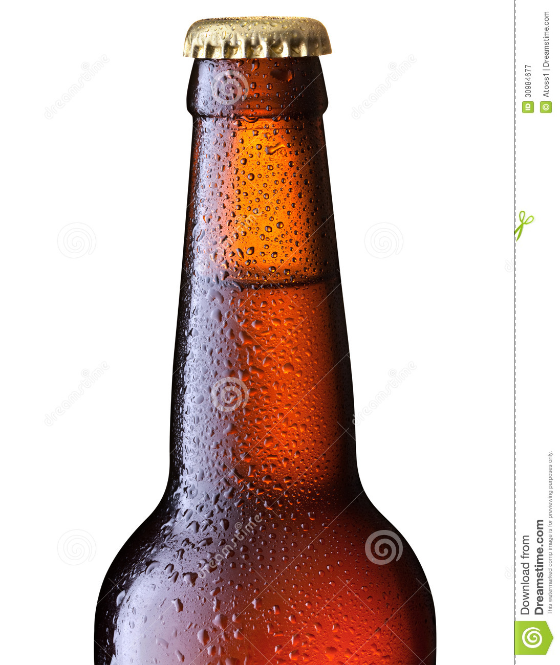 Brown beer bottle royalty free stock photography image 30984677