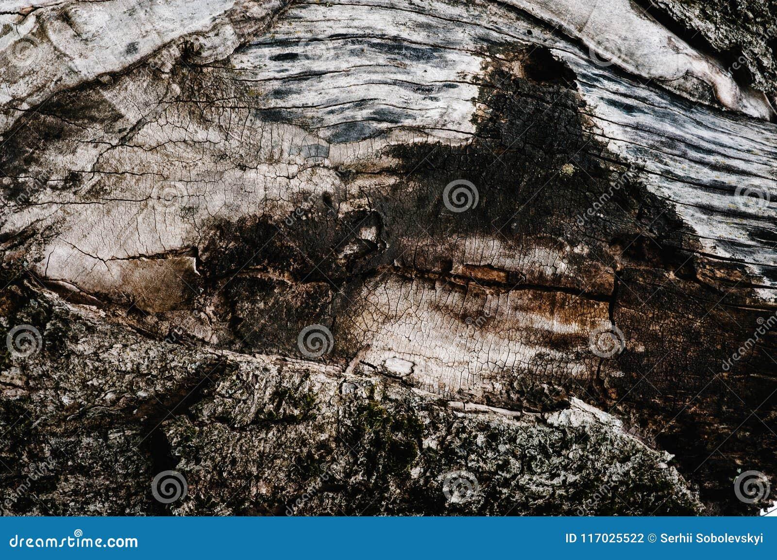 Brown-Beschaffenheit des alten Holzes Hölzerne Hintergrund Tapete und textu