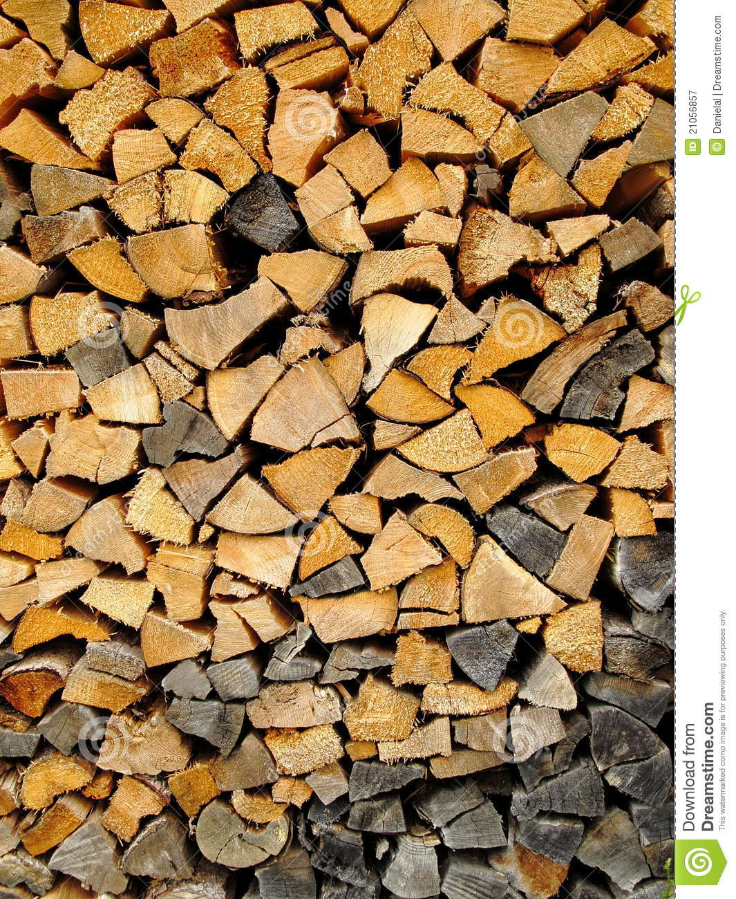 Stumps, The - The Black Wood
