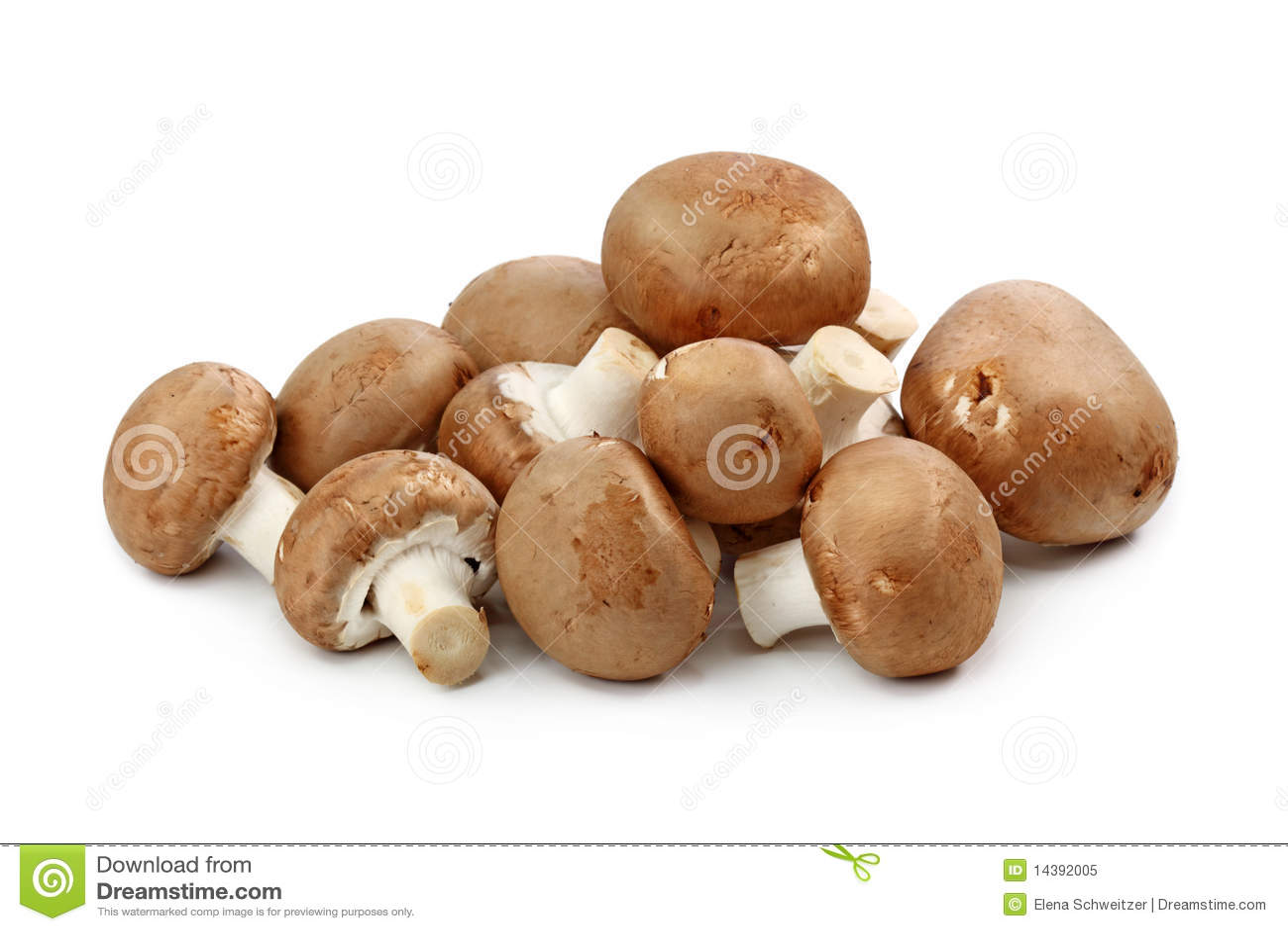 Brown-Champignons