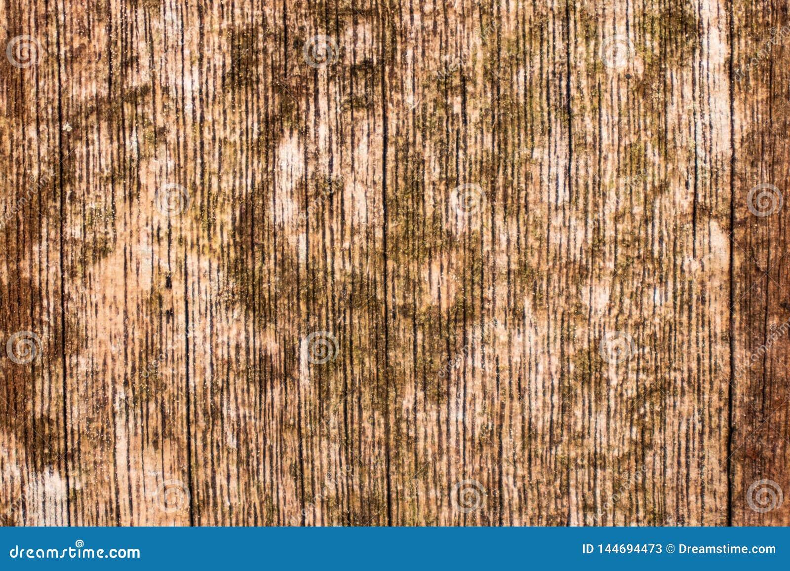 Brown e textura de madeira amarela