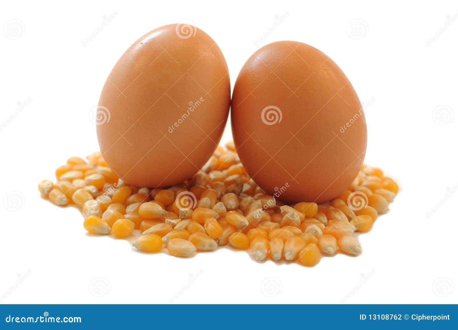 Brown Eggs on Corn