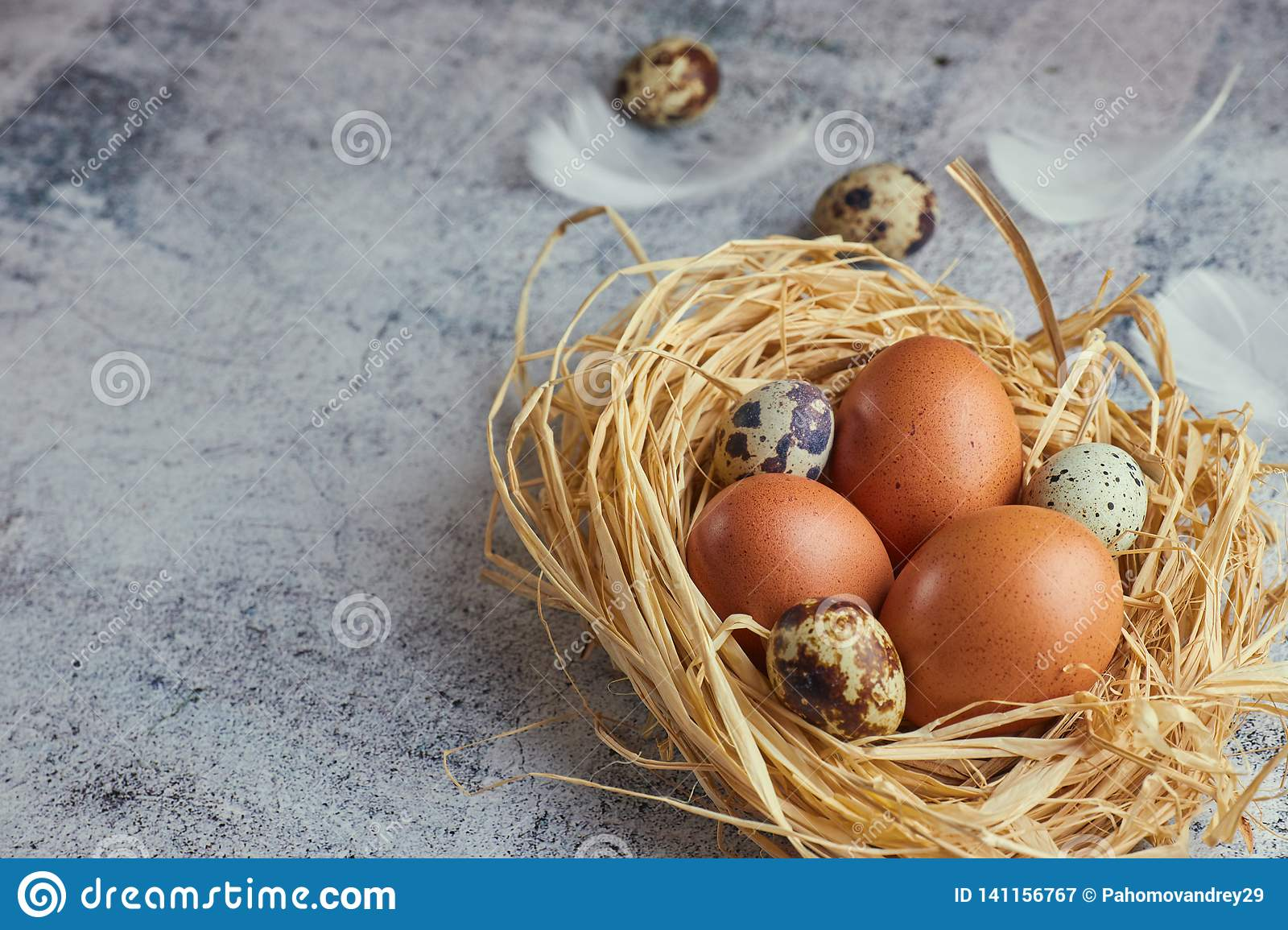 Brown eggs in hay nest on light concrete. fresh farm eggs. horizontal view of raw chicken eggs. The concept of the village. copy