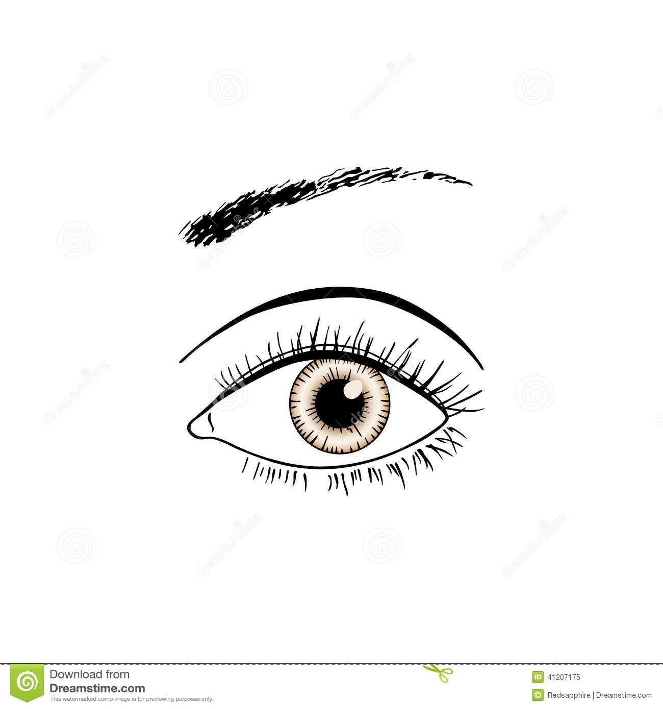 Line Art Eye : Brown eye line art stock vector illustration of girl