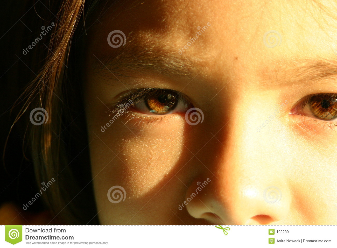 Brown eyes of eight year old girl