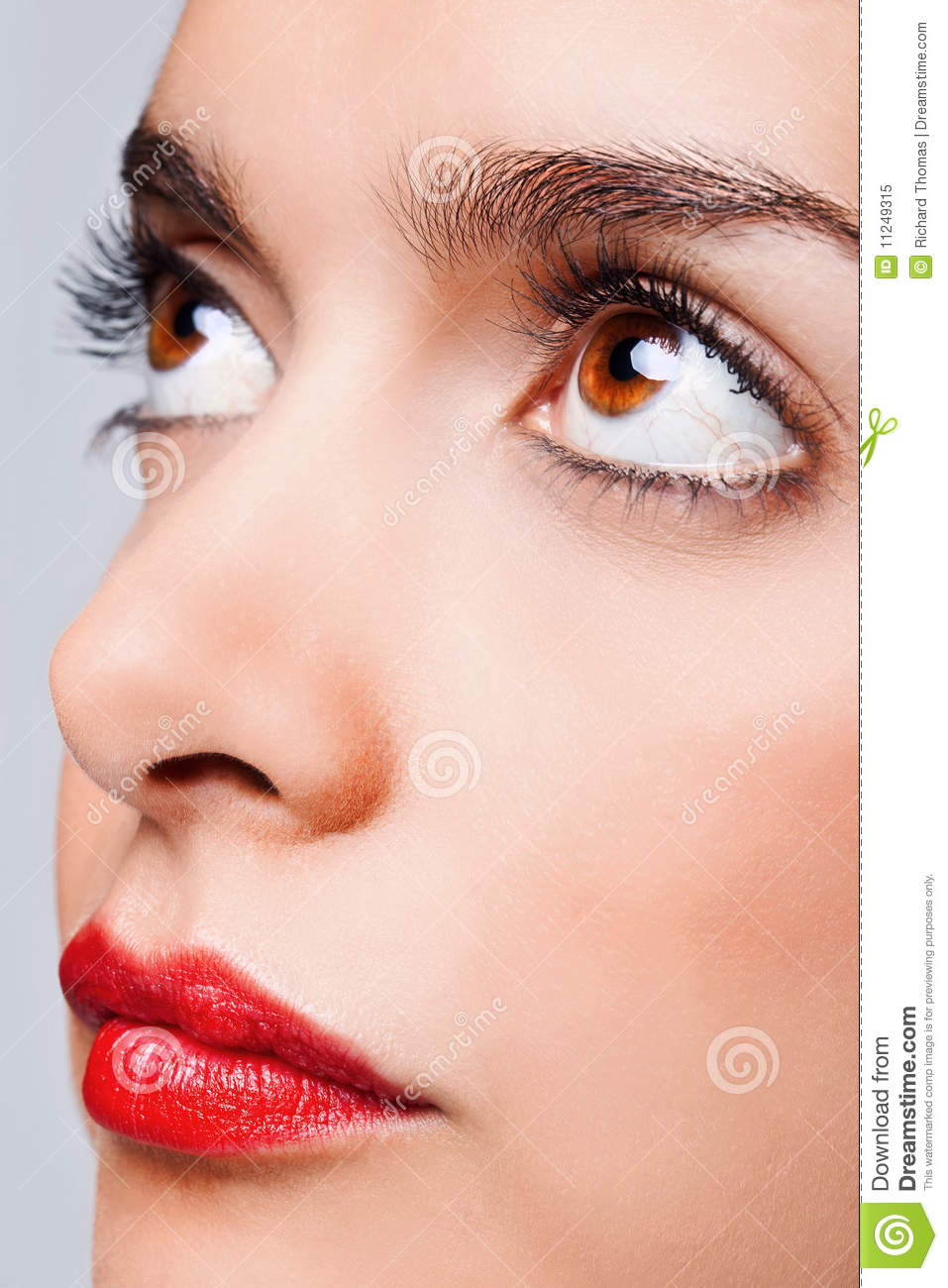 Brown Eyes And Red Lips Stock Image Image Of Brown