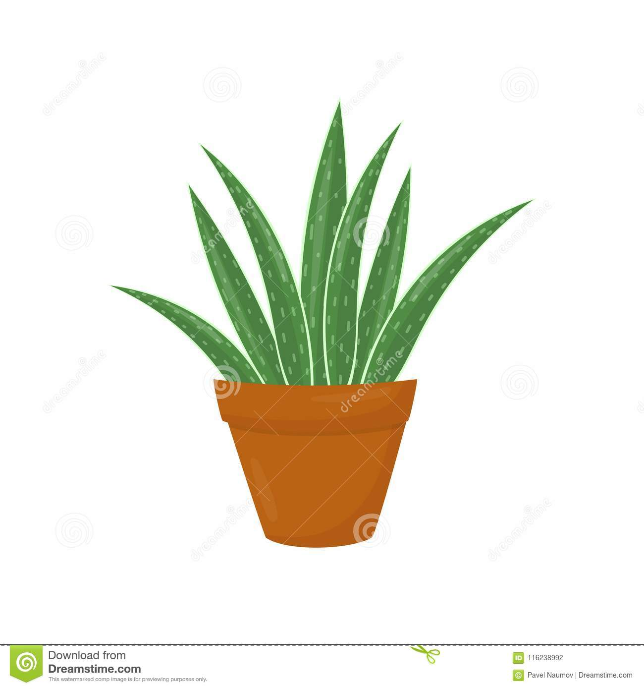 Brown Flowerpot With Aloe Vera. Green Medical Plant. Houseplant For ...