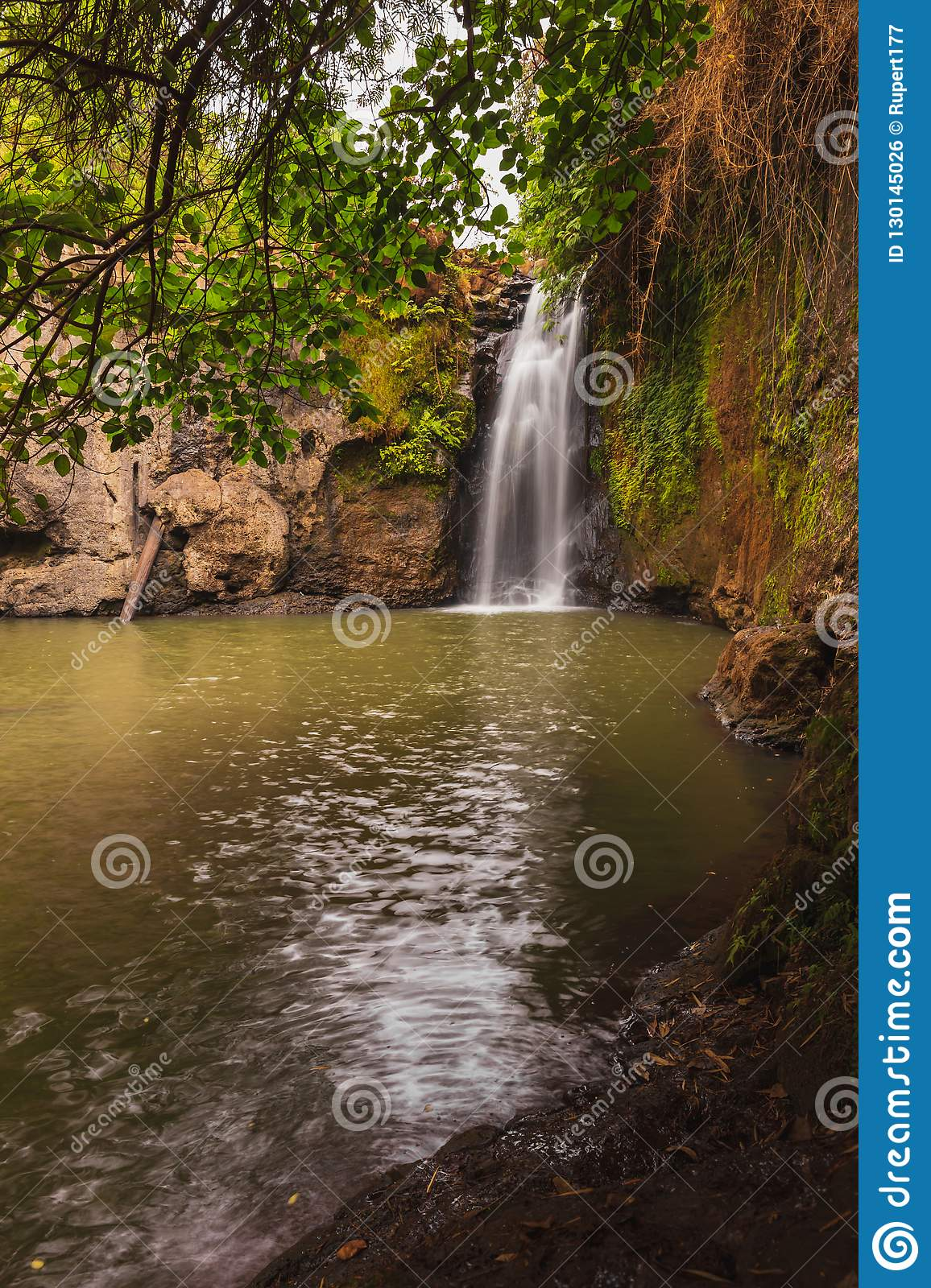 Brown and green waterfall spring from overhanging tree shade.