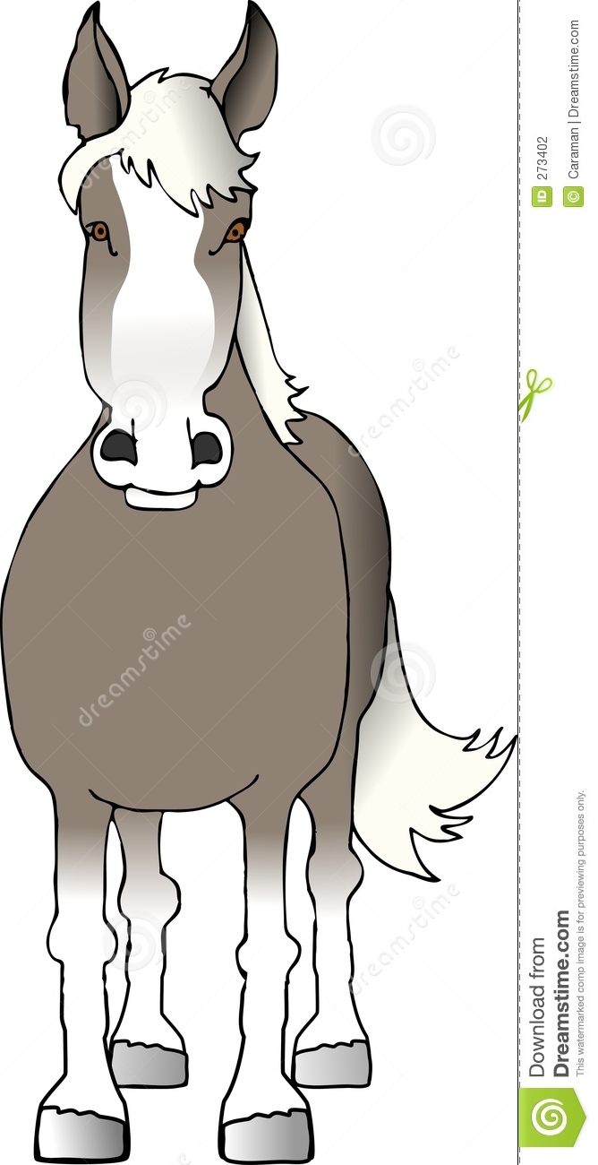 Brown horse, front view stock illustration. Image of trot ...