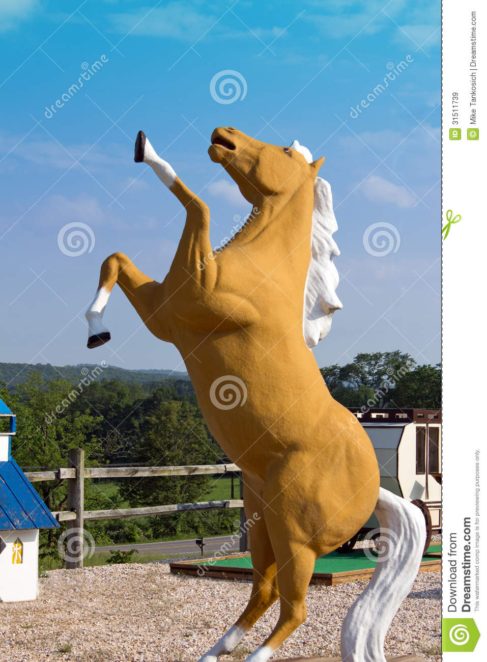 Brown Horse Rearing Up Stock Image Image Of Wild Country 31511739