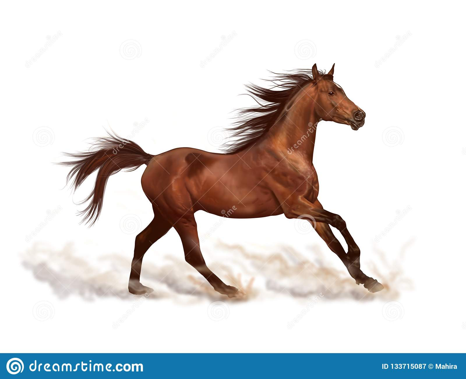 Horse White Background Stock Illustrations 50 313 Horse White Background Stock Illustrations Vectors Clipart Dreamstime