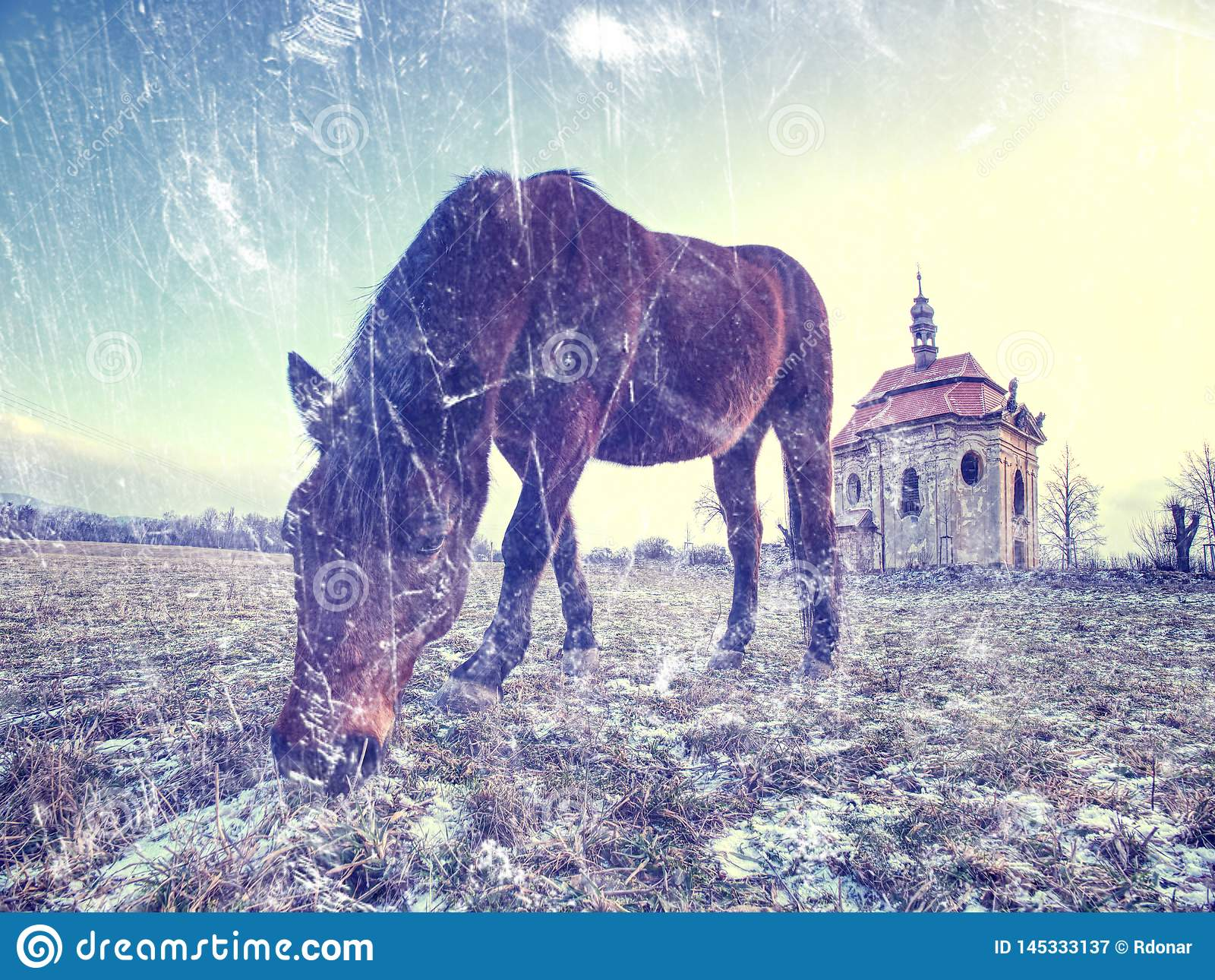 Brown horse in snowy paddock.Added light abstract effect