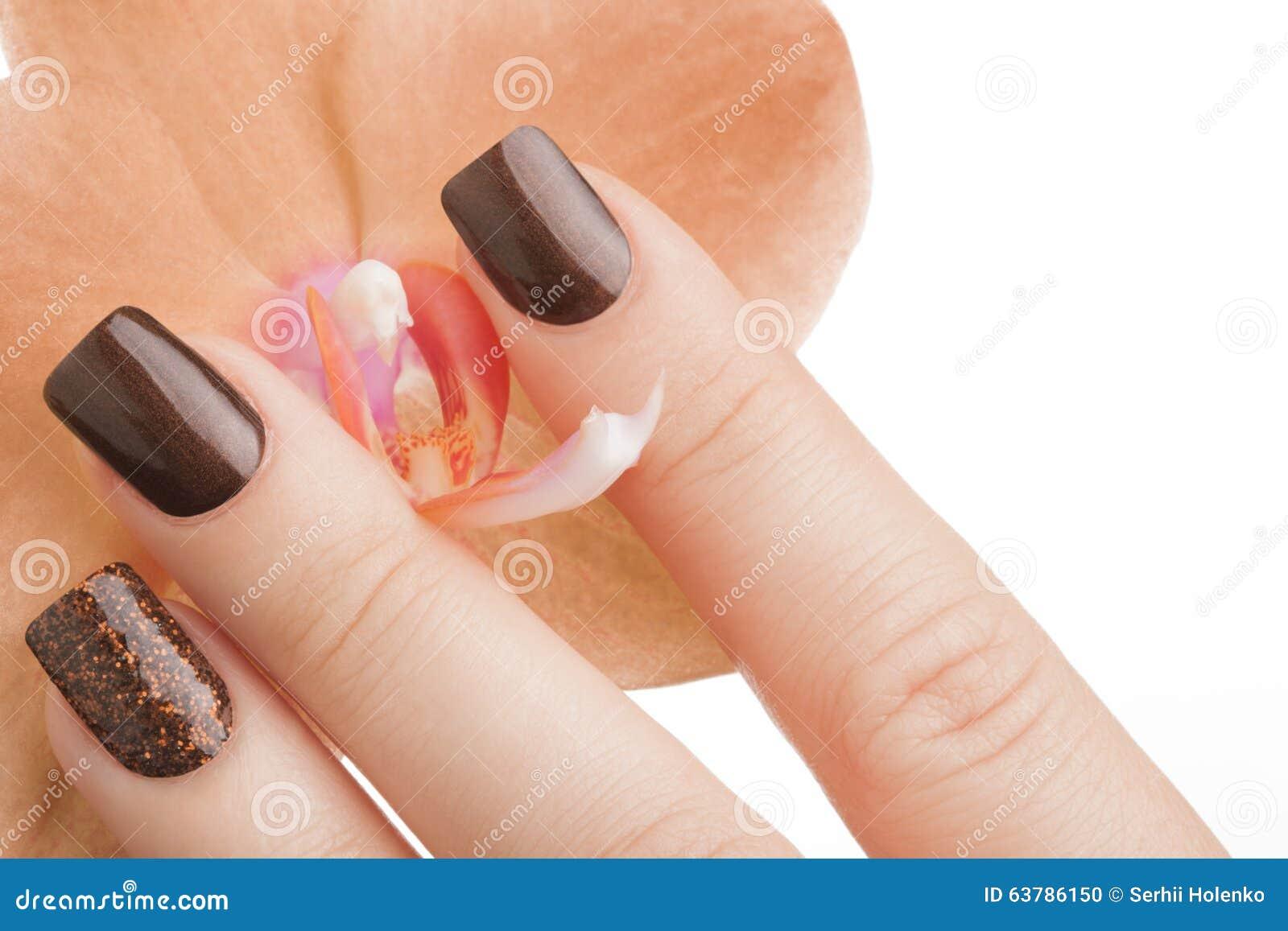 Brown nail polish on the nails stock photo image of beauty hand download brown nail polish on the nails stock photo image of beauty hand izmirmasajfo
