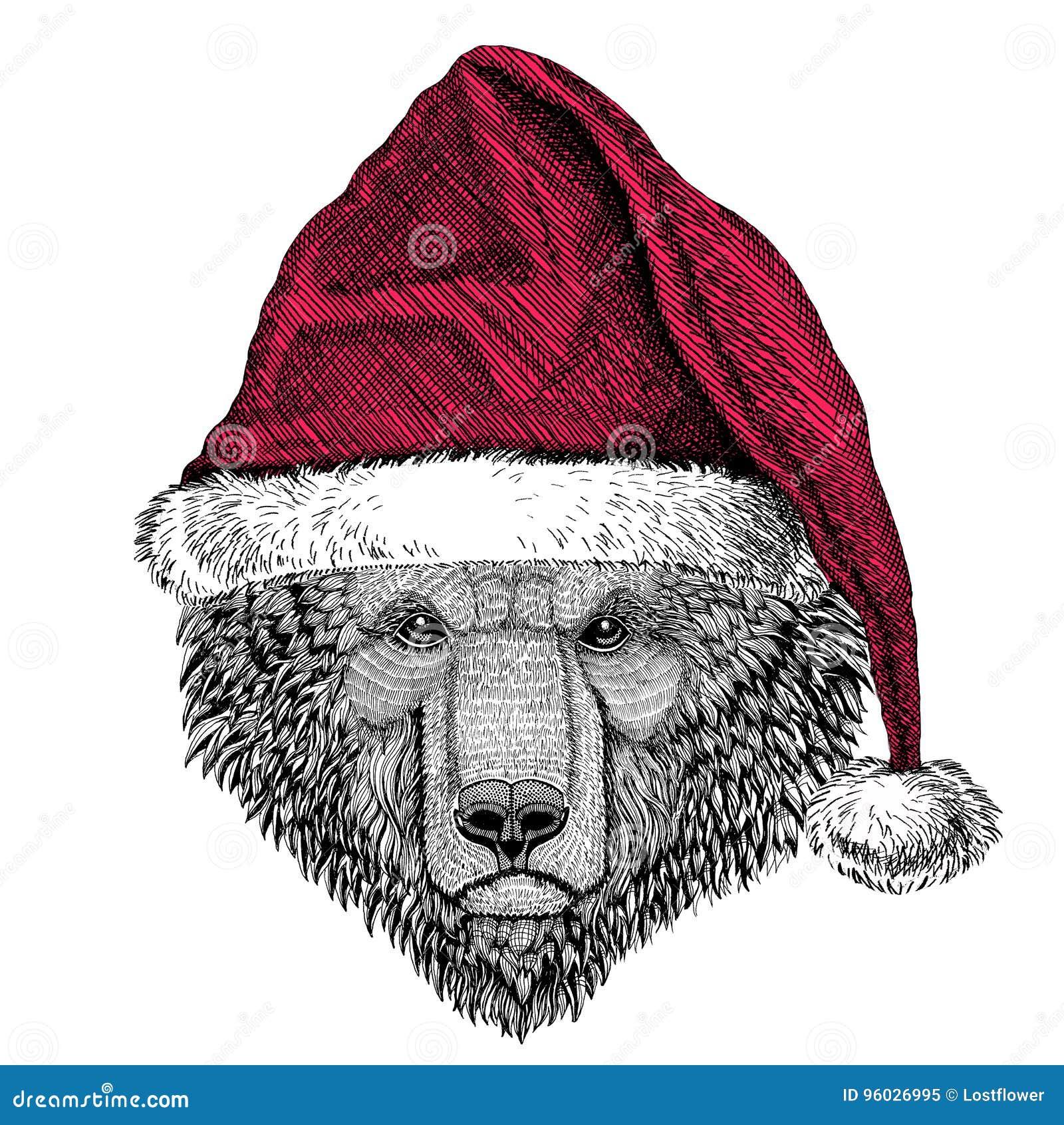 Brown niedźwiedzia rosjanina niedźwiedzia Bożenarodzeniowy ilustracyjny dzikie zwierzę jest ubranym bożego narodzenia Santa Claus