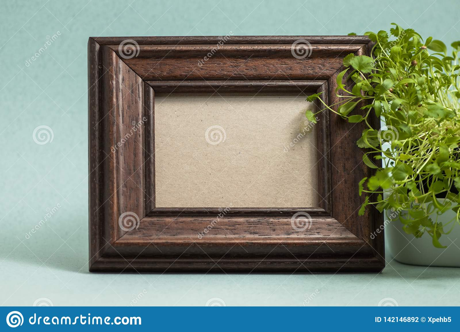 Brown photo frame with plant